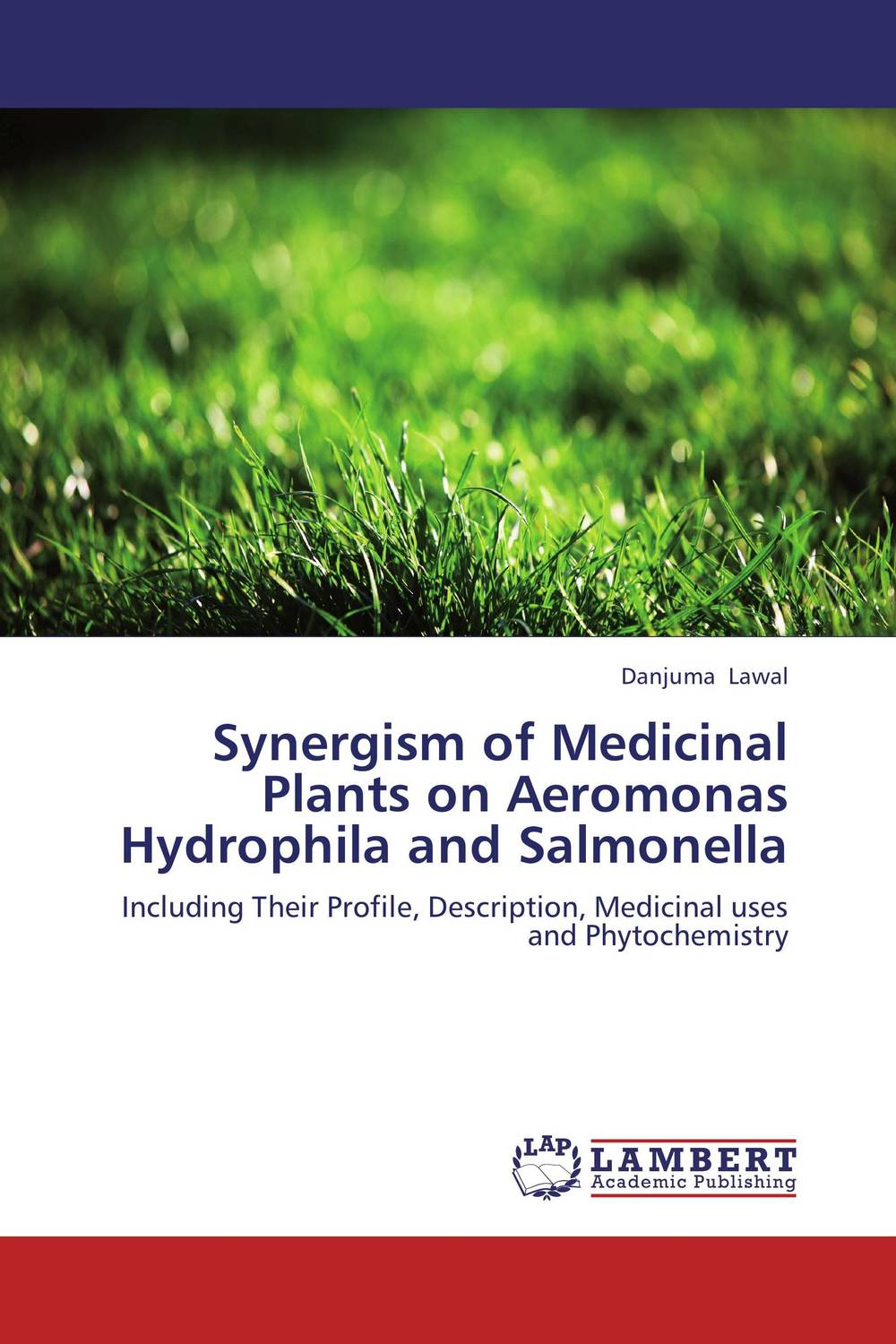 Synergism of Medicinal Plants on Aeromonas Hydrophila and Salmonella george varghese diana john and solomon habtemariam medicinal plants for kidney stone a monograph