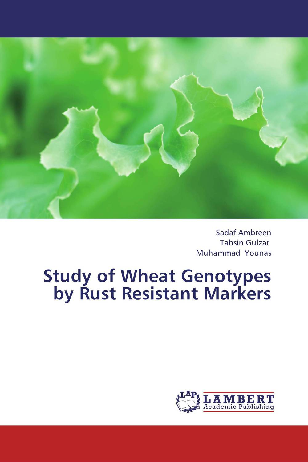 Study of Wheat Genotypes by Rust Resistant Markers wheat genotypes for irrigated and rainfed area using stress indices