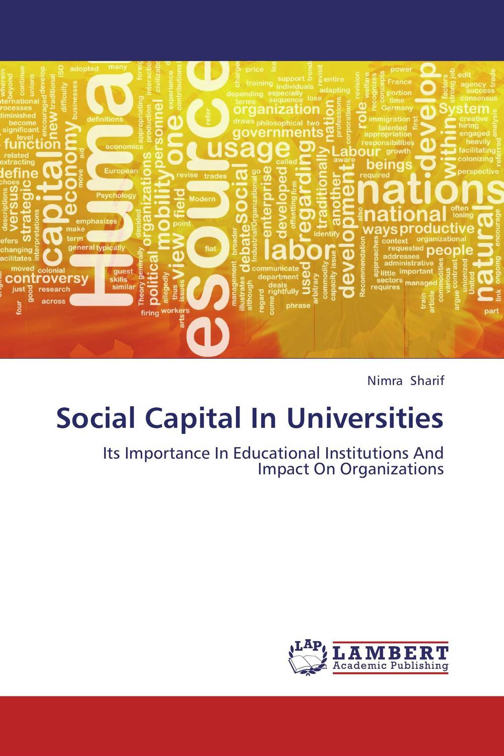 Social Capital In Universities i manev social capital and strategy effectiveness an empirical study of entrepreneurial ventures in a transition economy
