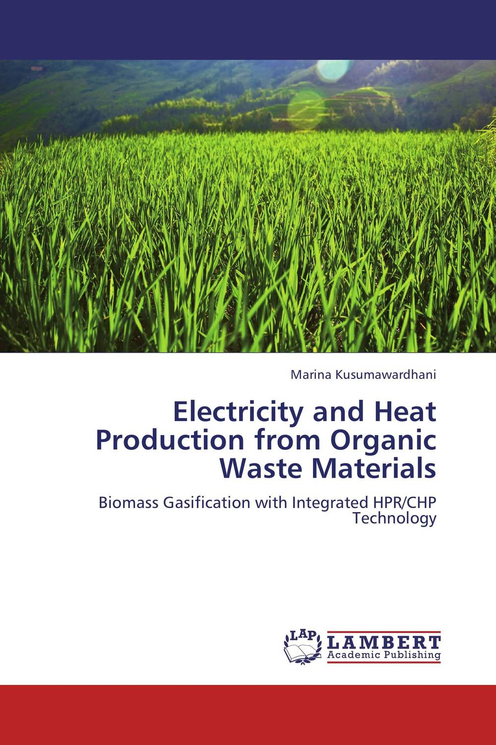 Electricity and Heat Production from Organic Waste Materials amal owis and yasser el tahlawy residues and wastes biomass in egypt