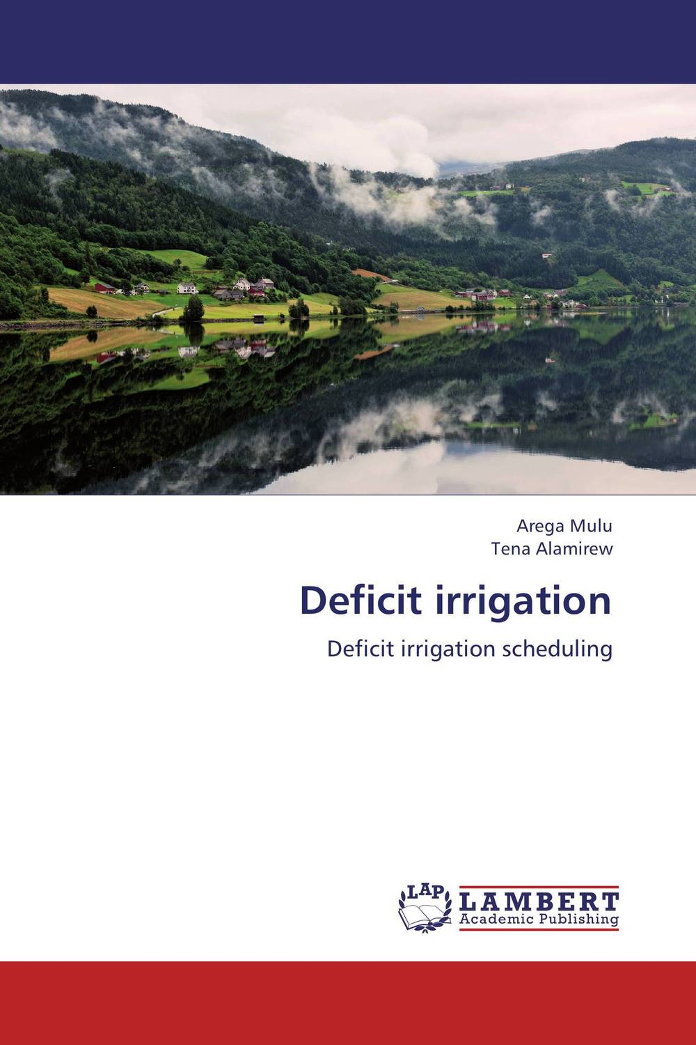 Deficit irrigation margaretha dramsdahl adults with attention deficit hyperactivity disorder