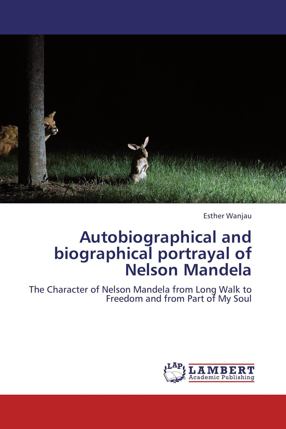 Autobiographical and biographical portrayal of Nelson Mandela