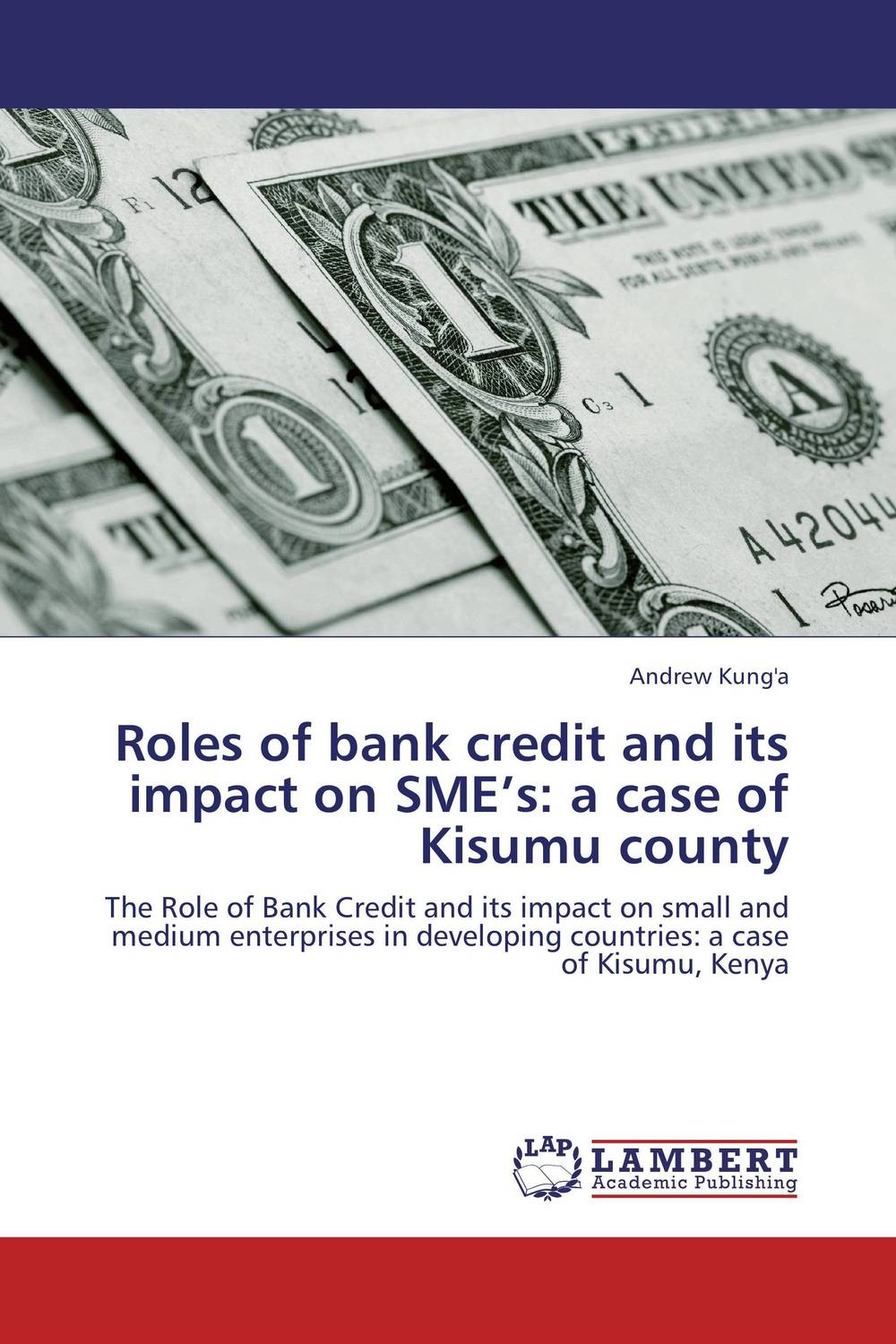 Roles of bank credit and its impact on SME's: a case of Kisumu county the challenges experienced by non governmental organisations