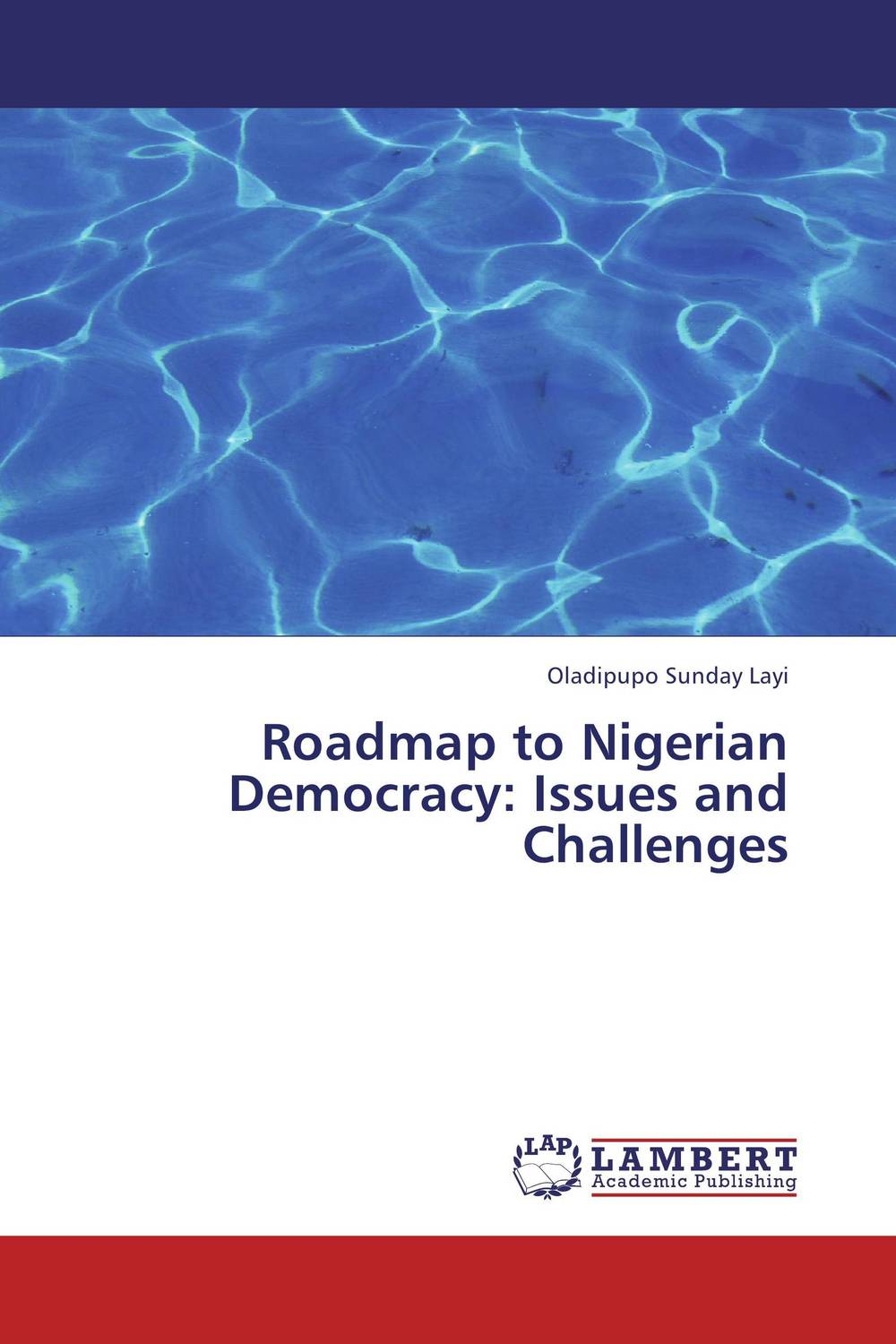 Roadmap to Nigerian Democracy: Issues and Challenges democracy in america nce