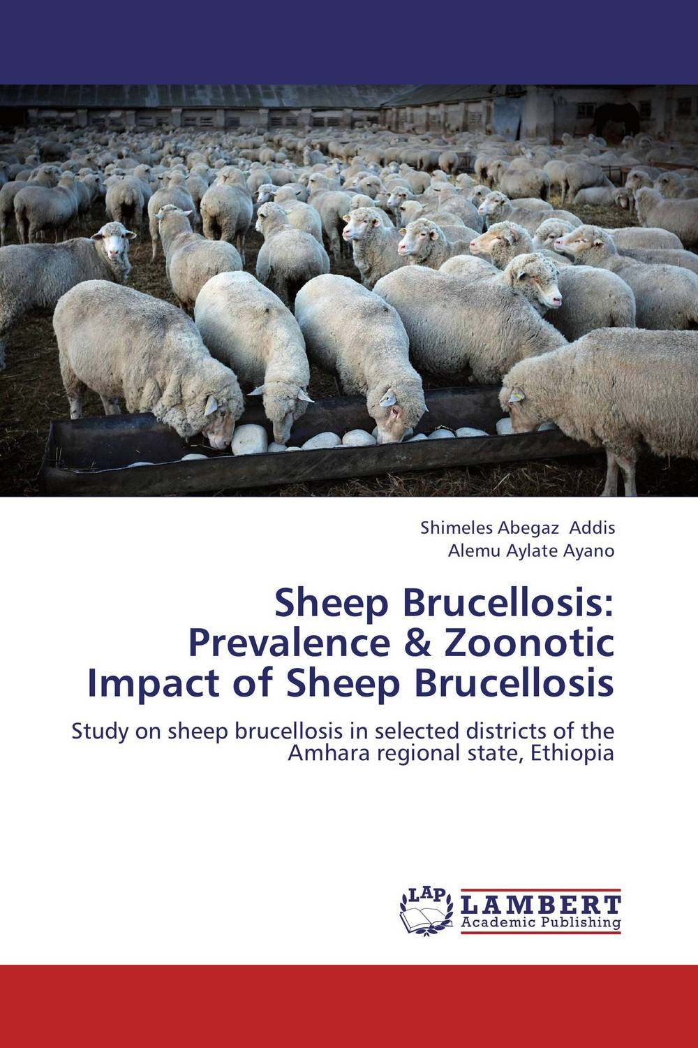 Sheep Brucellosis: Prevalence & Zoonotic Impact of Sheep Brucellosis kromax office 3
