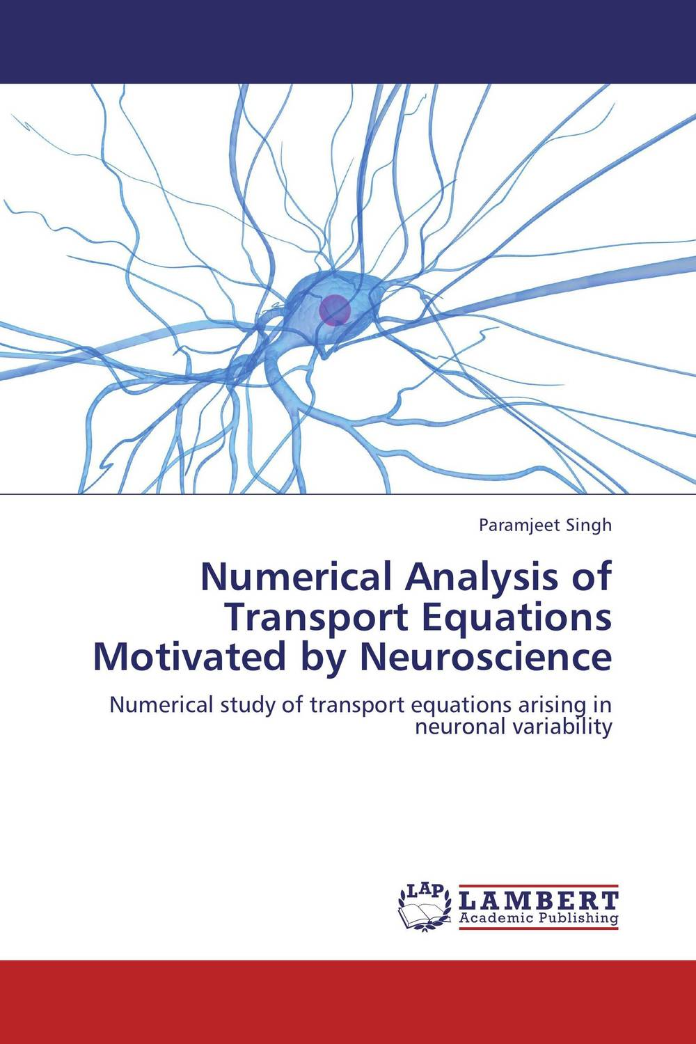 Numerical Analysis of Transport Equations Motivated by Neuroscience
