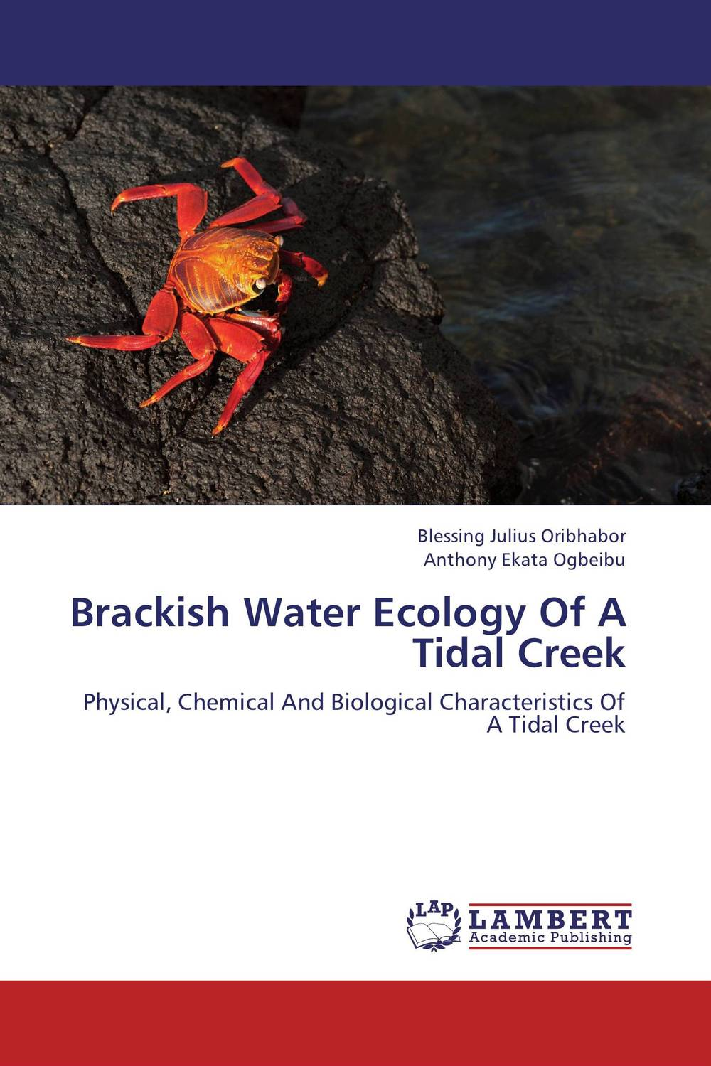 Brackish Water Ecology Of A Tidal Creek bride of the water god v 3