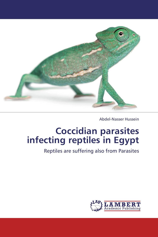 Coccidian parasites infecting reptiles in Egypt souvenir of egypt