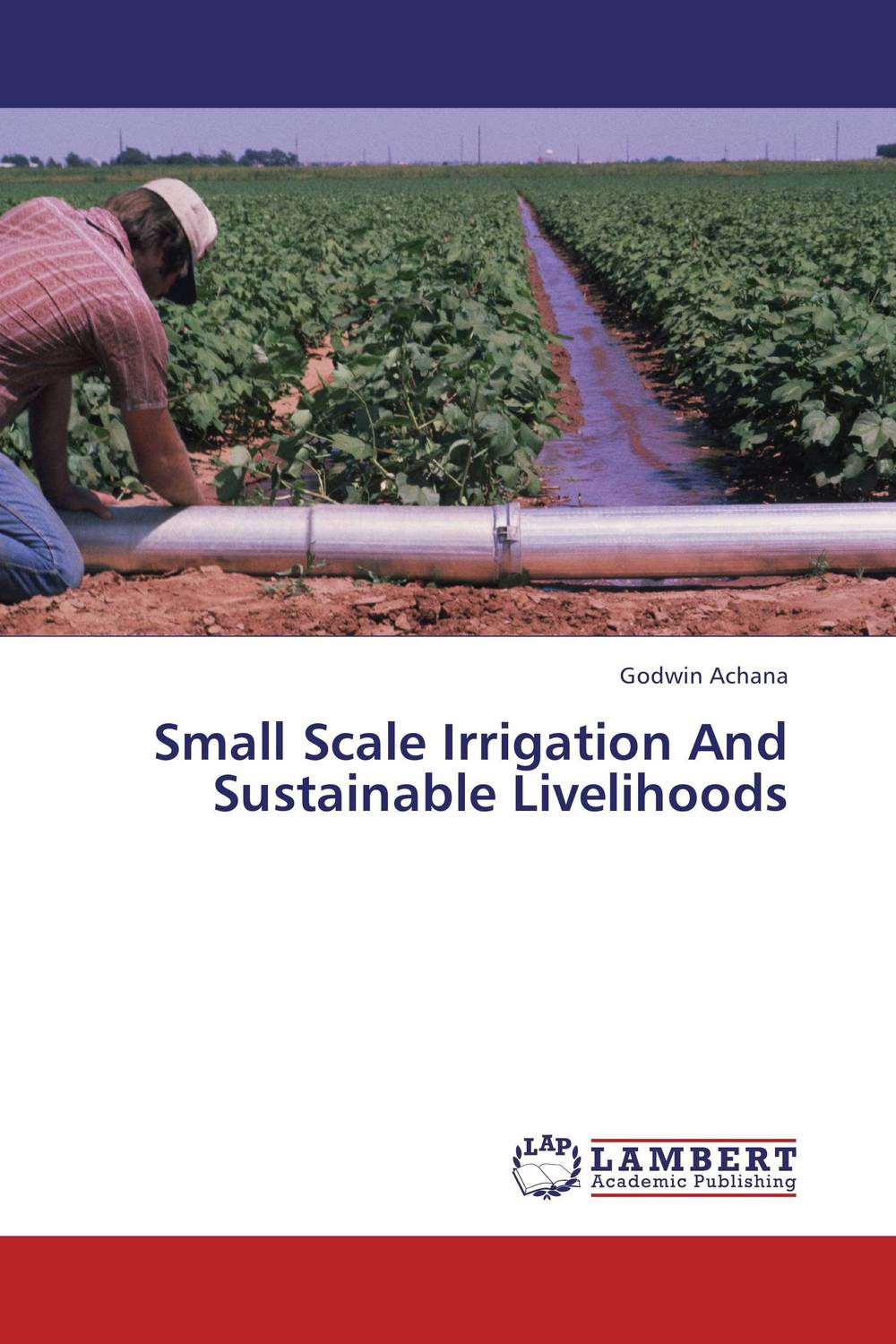 Small Scale Irrigation And Sustainable Livelihoods impact of small scale irrigation schemes on poverty reduction