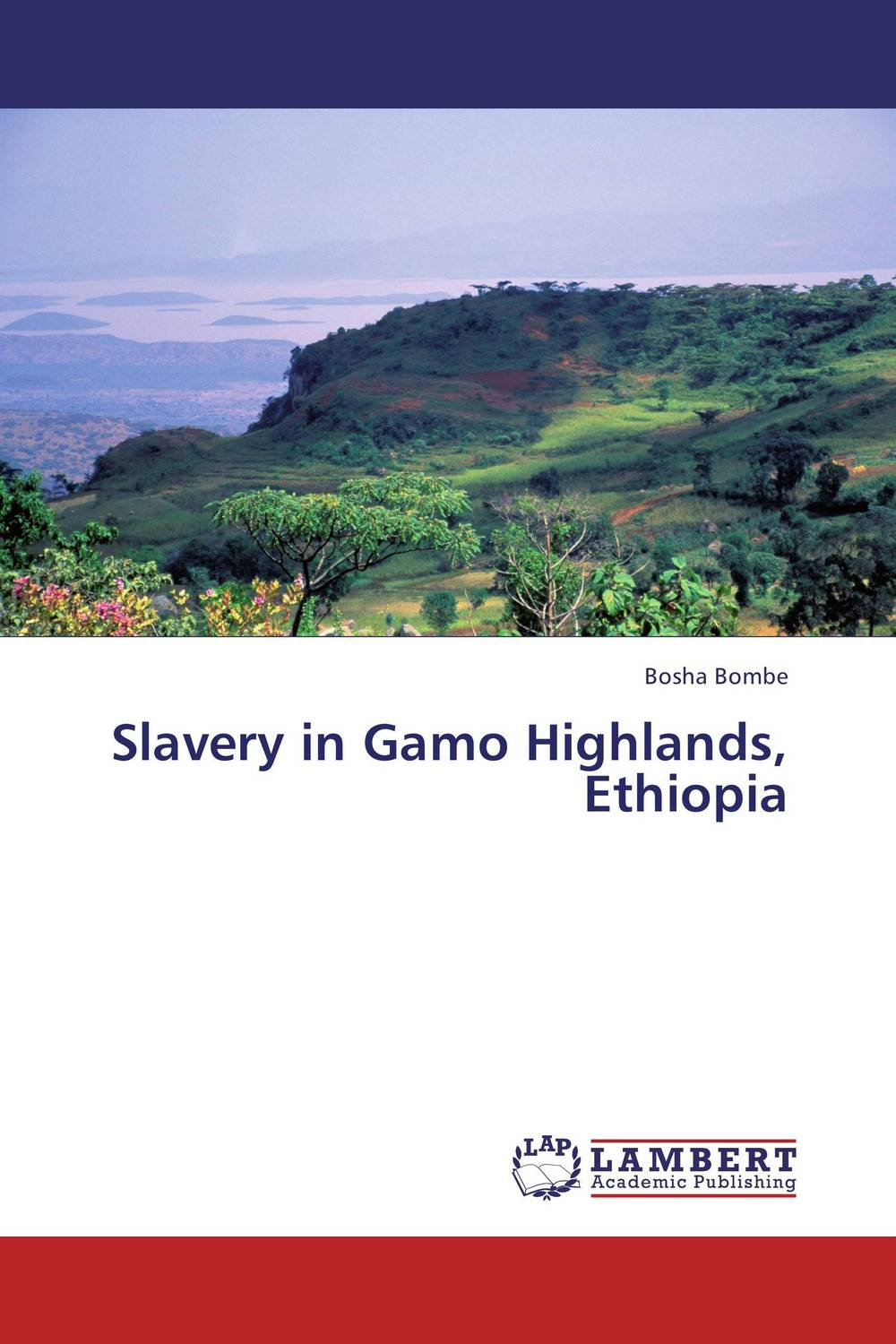 Slavery in Gamo Highlands, Ethiopia прицел gamo 3 9х40 llwr ve39x40wrv w1pmv