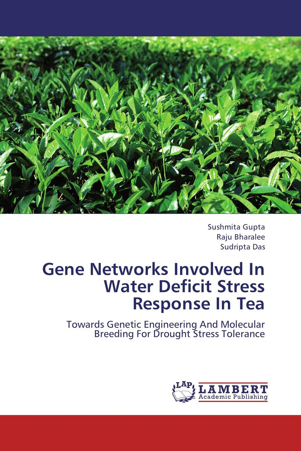 Gene Networks Involved In Water Deficit Stress  Response In Tea improved expression of bacterial chia in plant by codon optimisation
