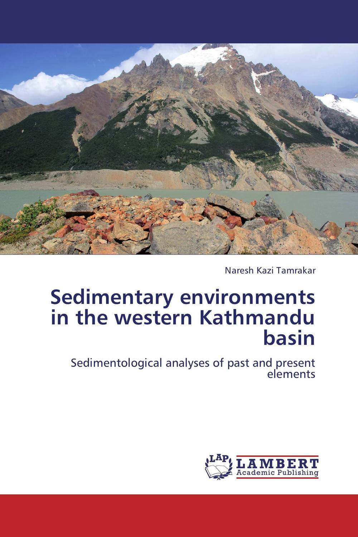Sedimentary environments in the western Kathmandu basin the heir