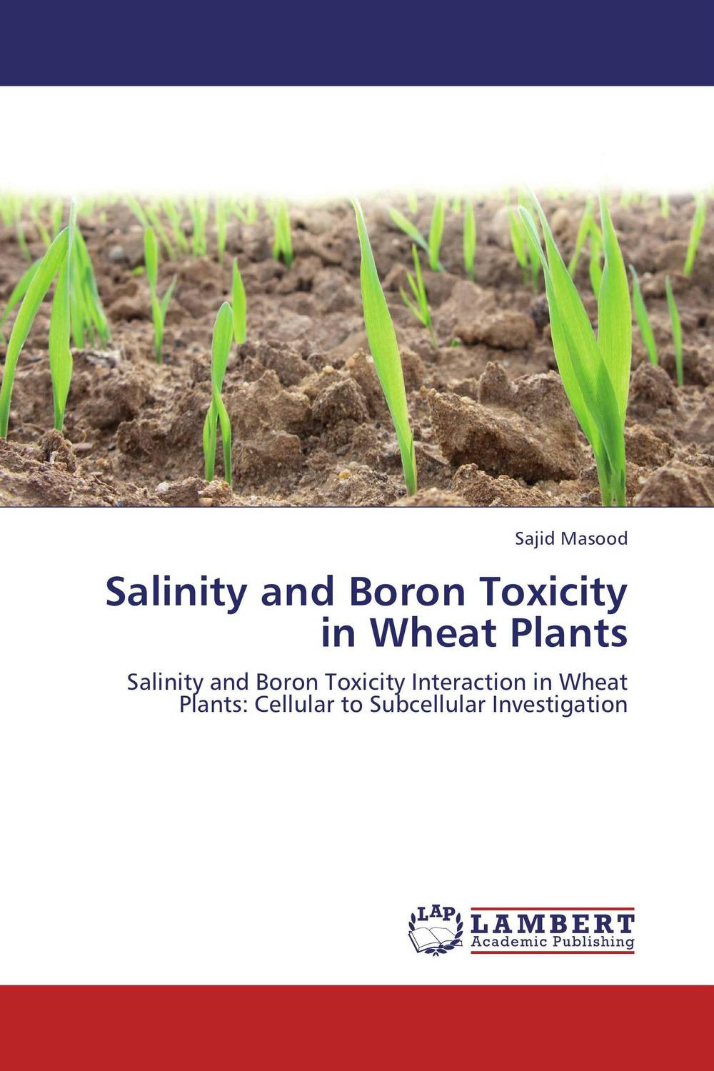 Salinity and Boron Toxicity in Wheat Plants toxic bachelors