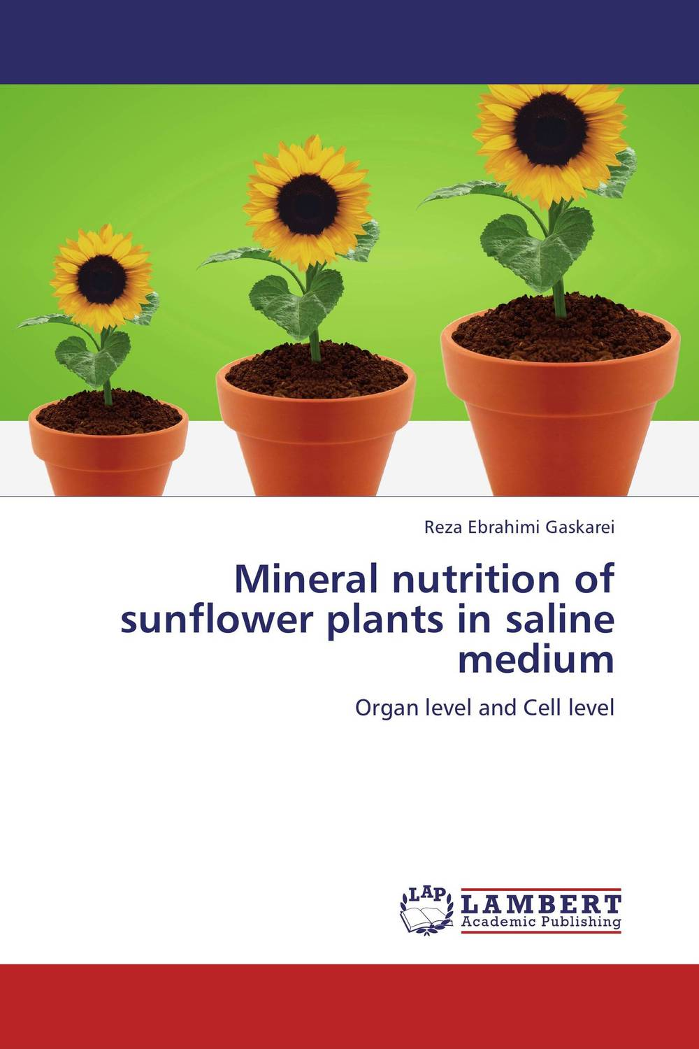 Mineral  nutrition of sunflower plants in saline medium the role of dna damage and repair in cell aging 4