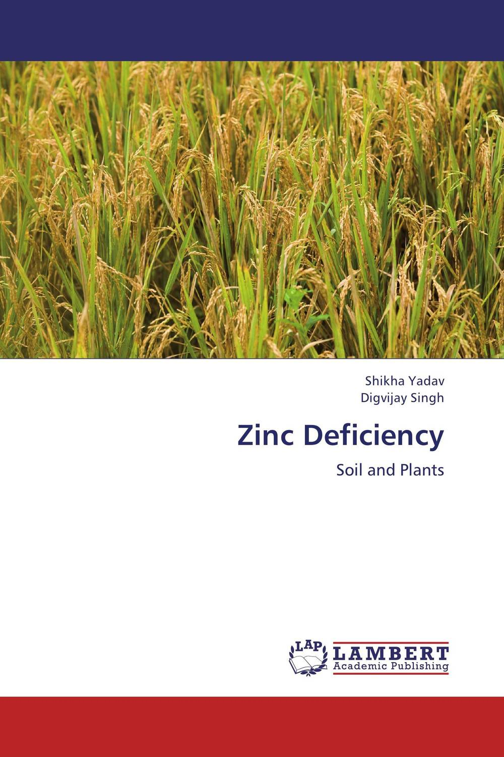 Zinc Deficiency in situ detection of dna damage methods and protocols