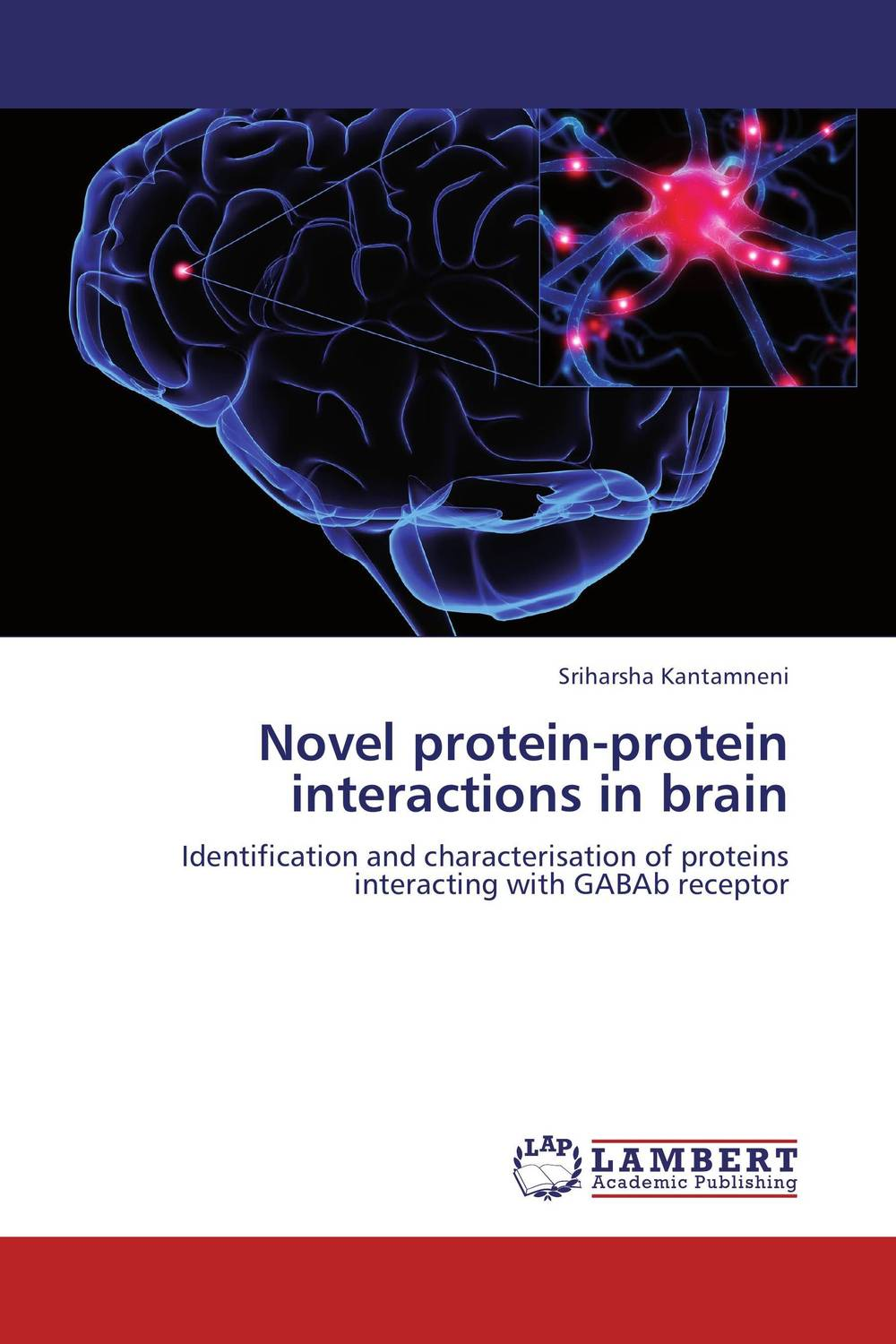 Novel protein-protein interactions in brain image receptors in radiology