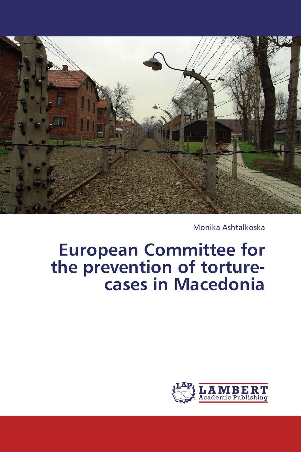 European Committee for the prevention of torture-cases in Macedonia the ministry of utmost happiness