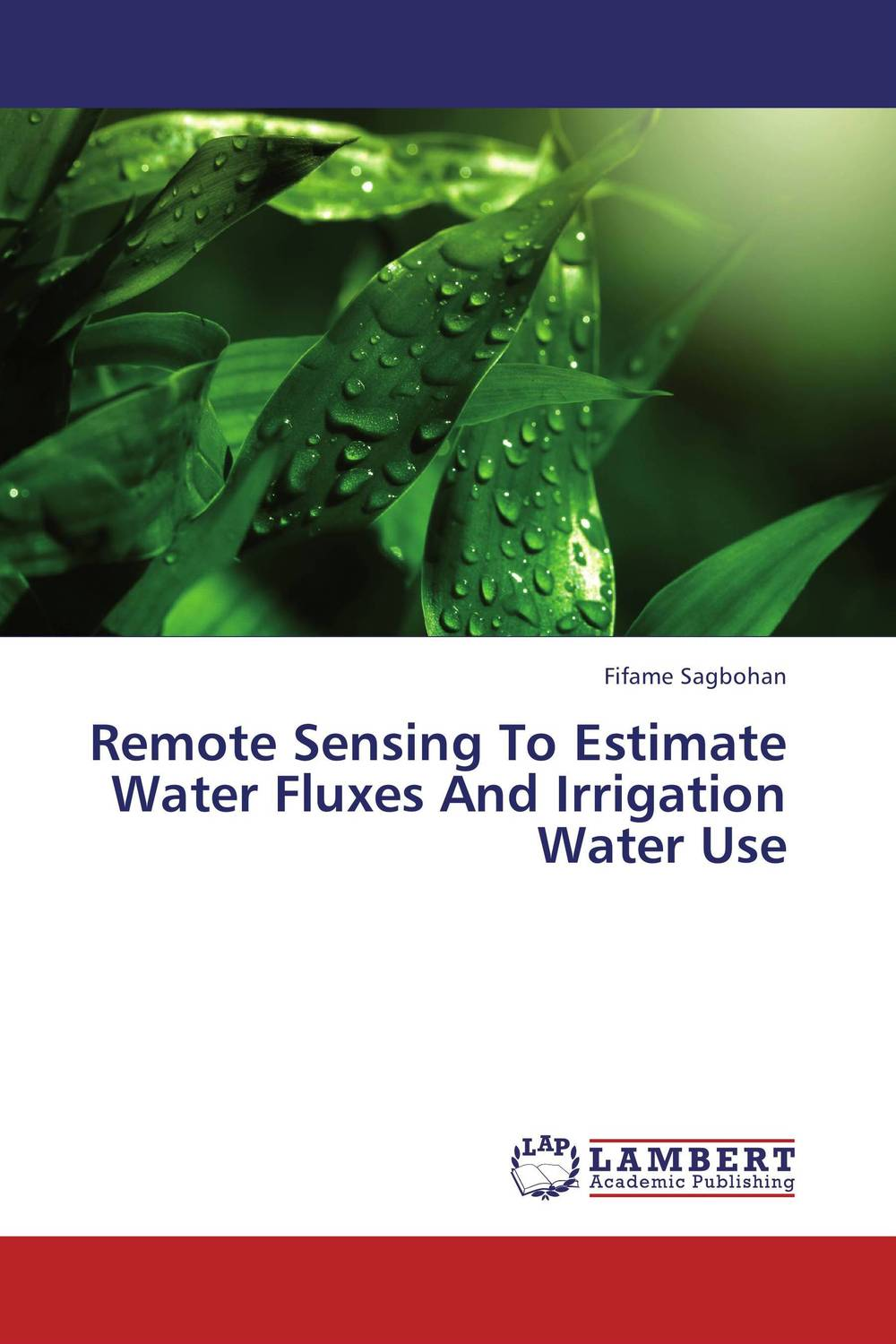Remote Sensing To Estimate Water Fluxes And Irrigation Water Use