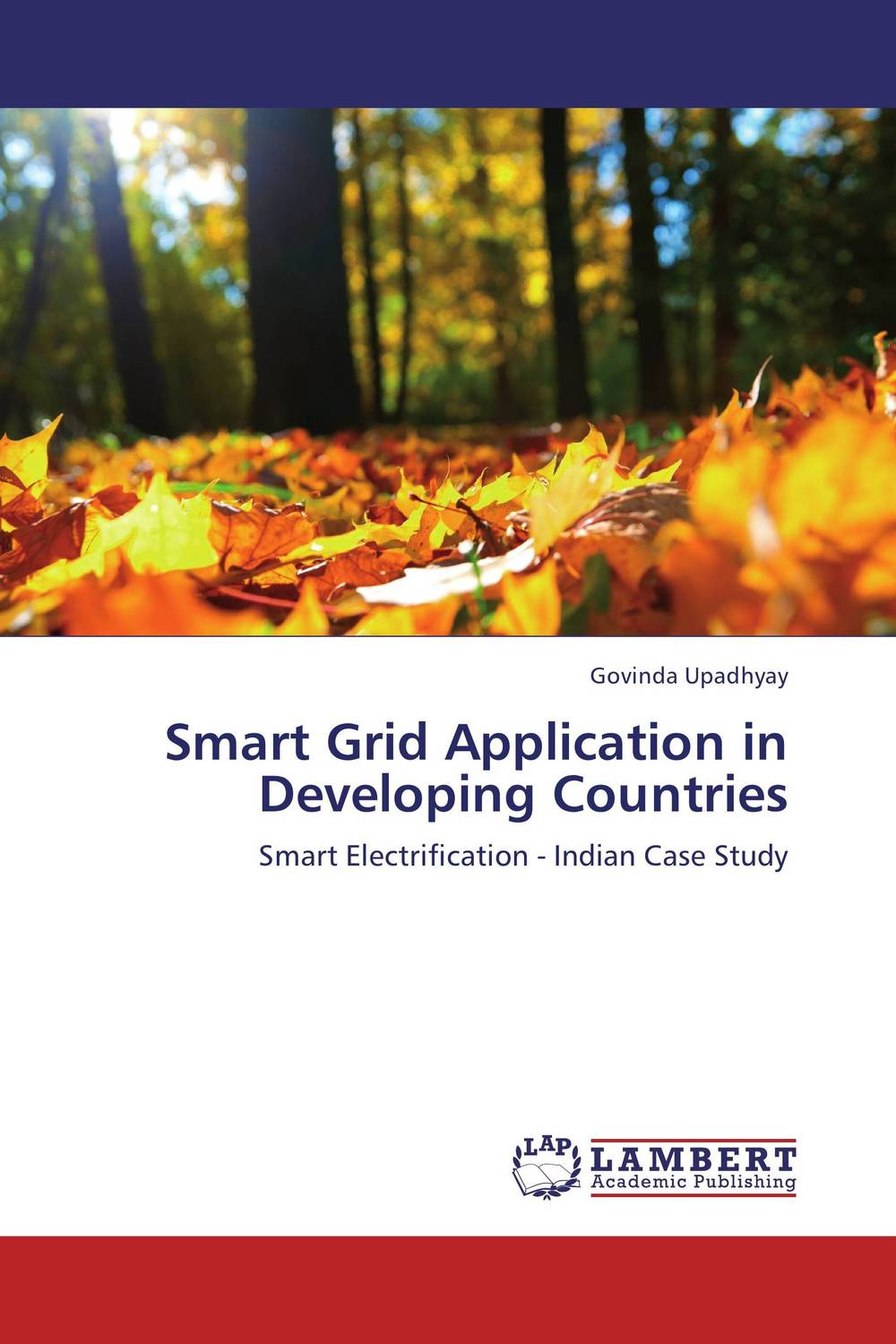Smart Grid Application in Developing Countries women as work force in rural india