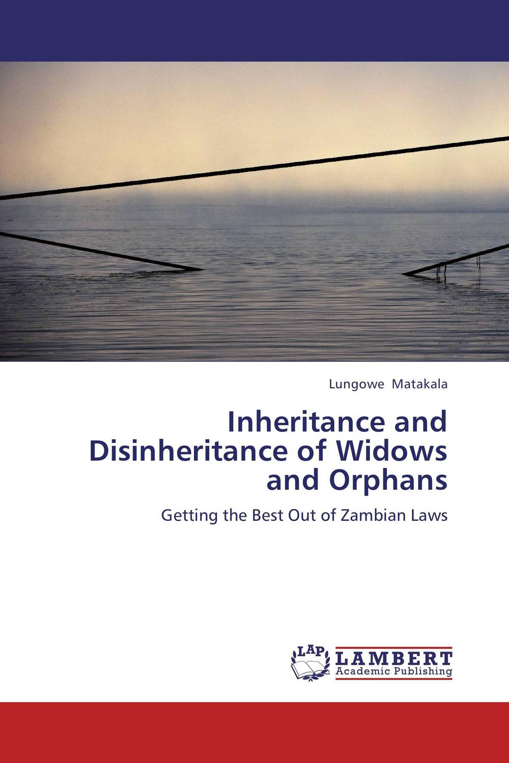 Inheritance and Disinheritance of Widows and Orphans victims stories and the advancement of human rights