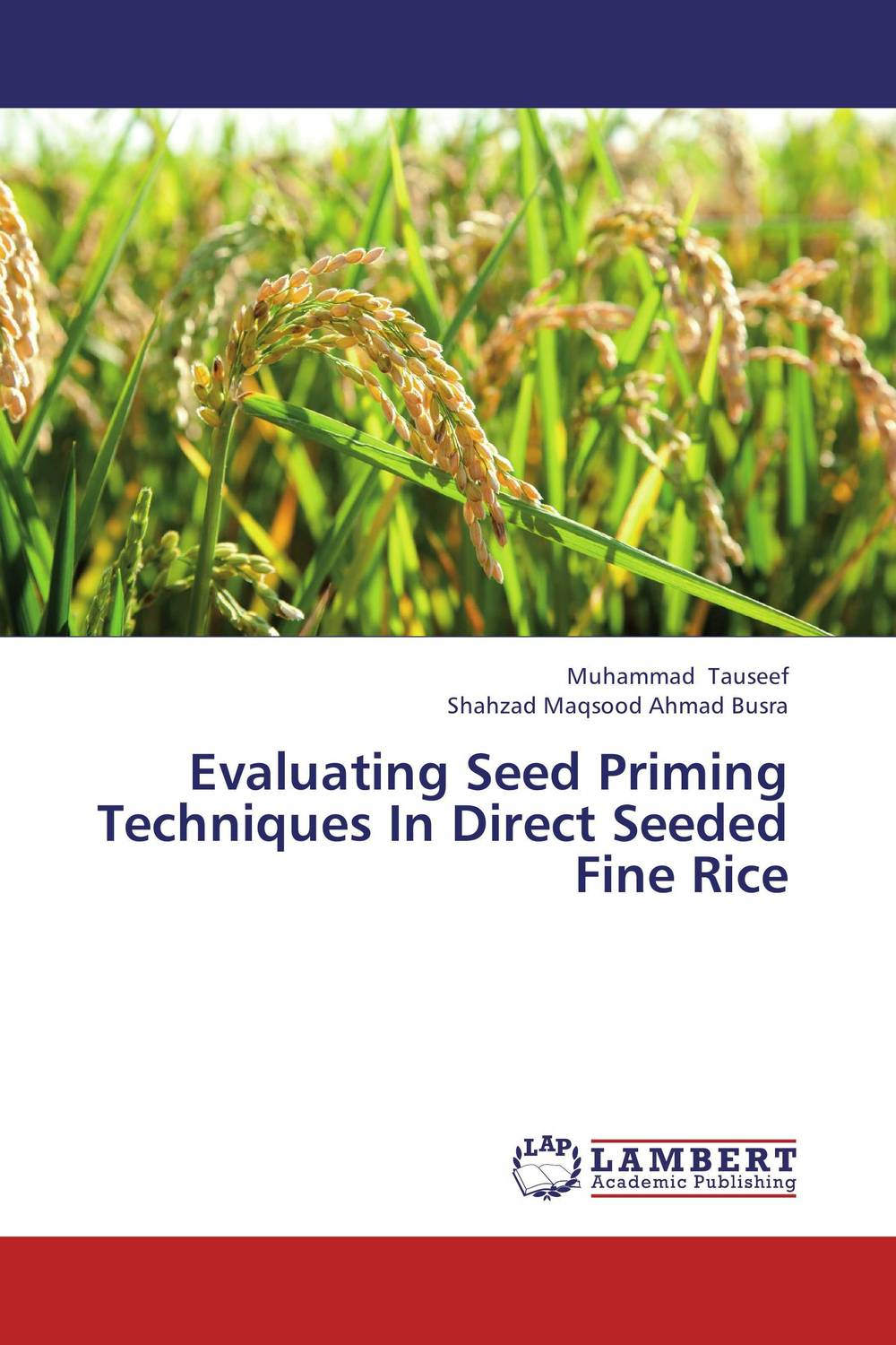 Evaluating Seed Priming Techniques In Direct Seeded Fine Rice seed dormancy and germination