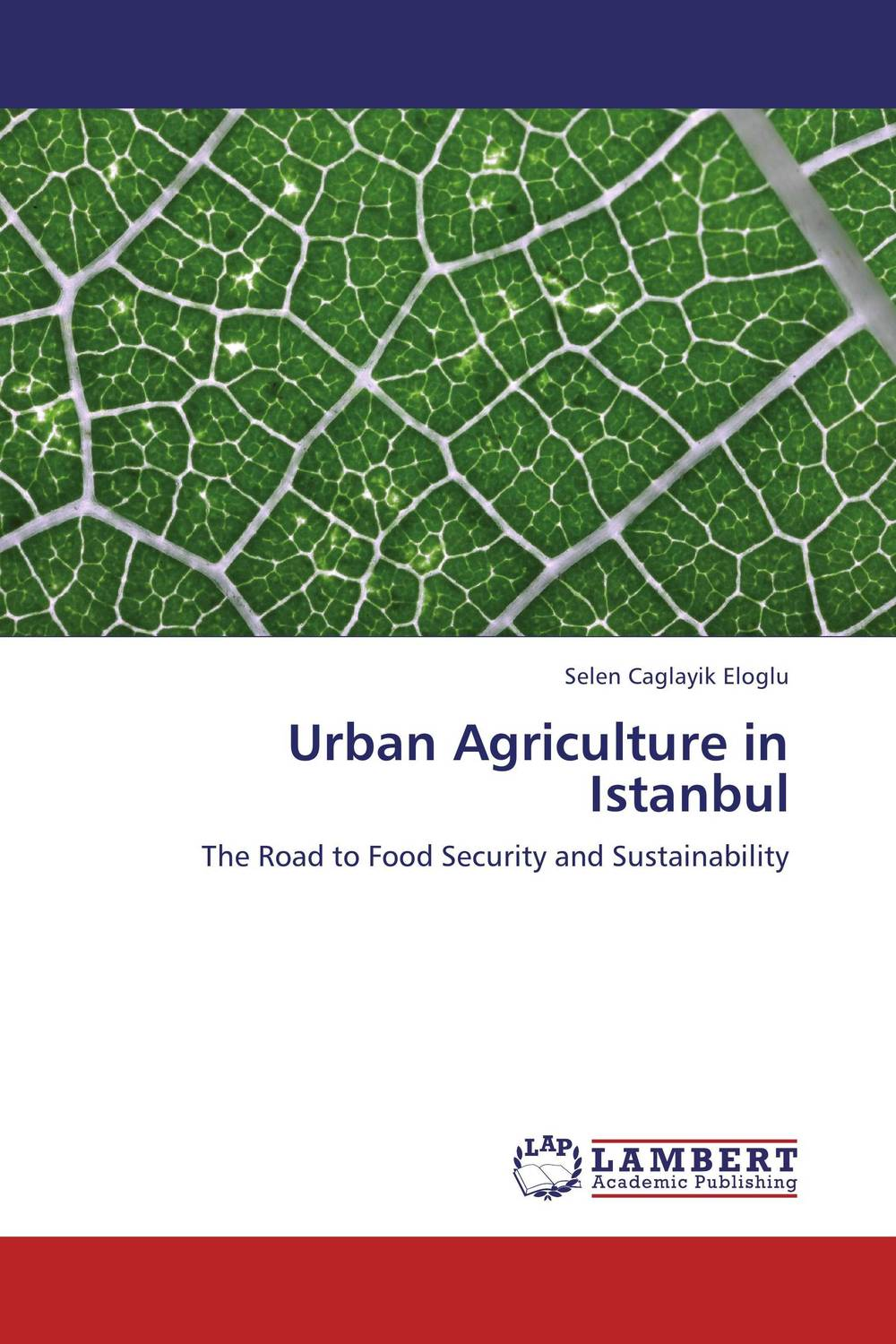 Urban Agriculture in Istanbul the pattern and process of urban social exclusion in istanbul