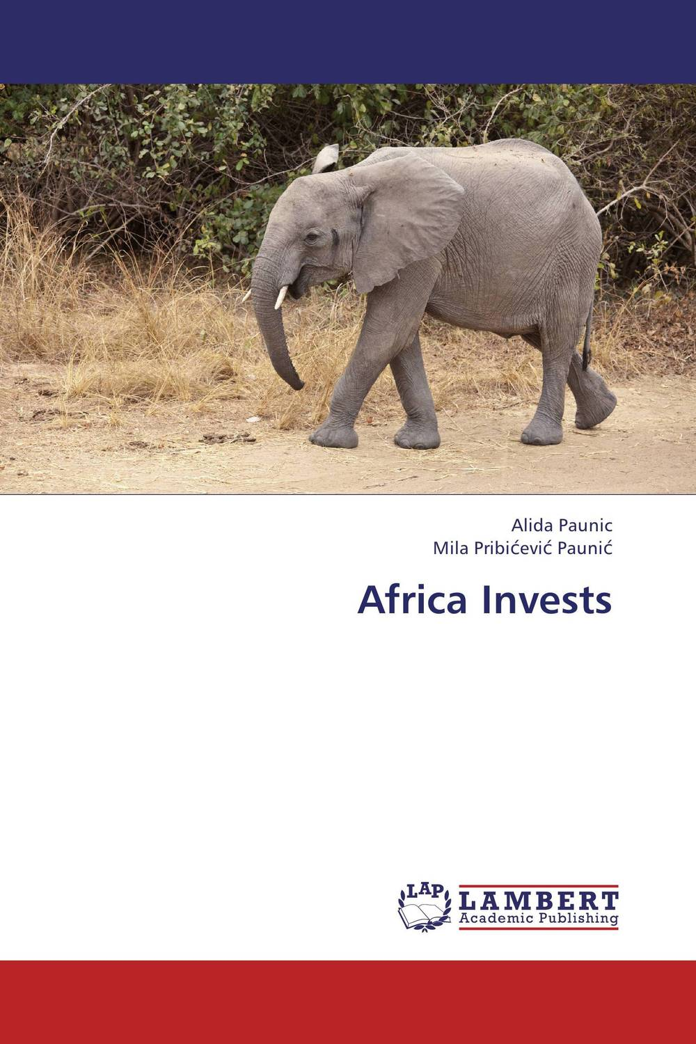 Africa Invests corporate governance and firm value