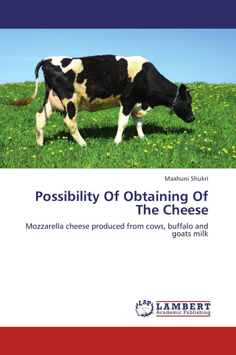Possibility Of Obtaining Of The Cheese