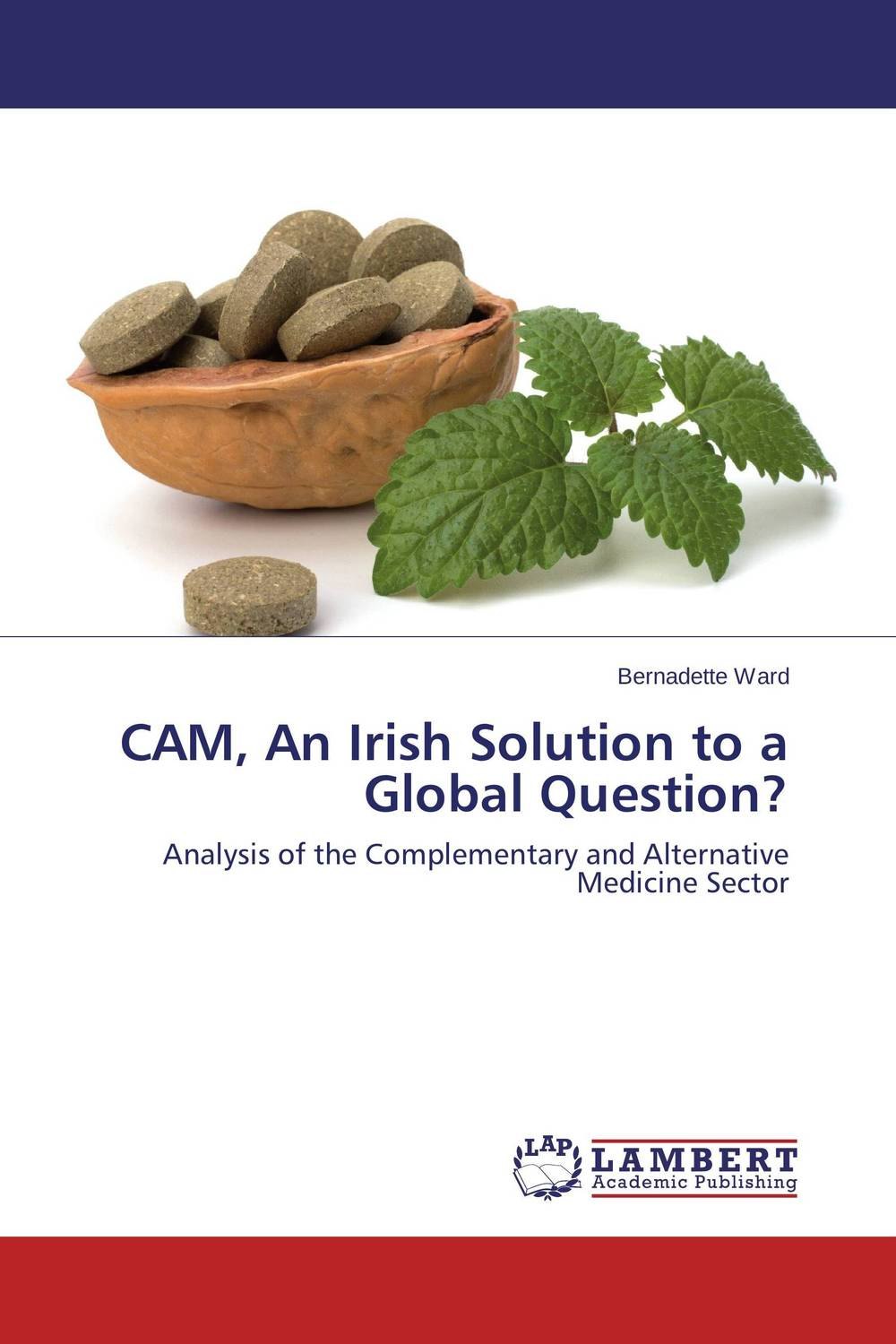 CAM, An Irish Solution to a Global Question? a comparative study of public and private healthcare services