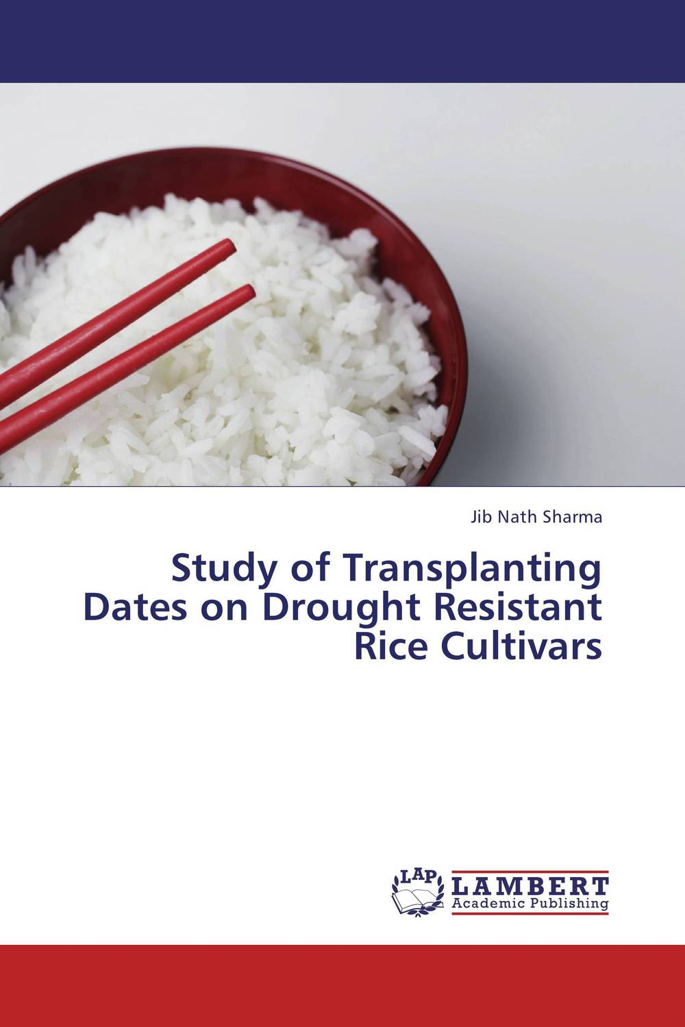 Study of Transplanting Dates on Drought Resistant Rice Cultivars big jujube clip walnut raisin cashew wolfberry honey red dates with white sesame red dates 500g