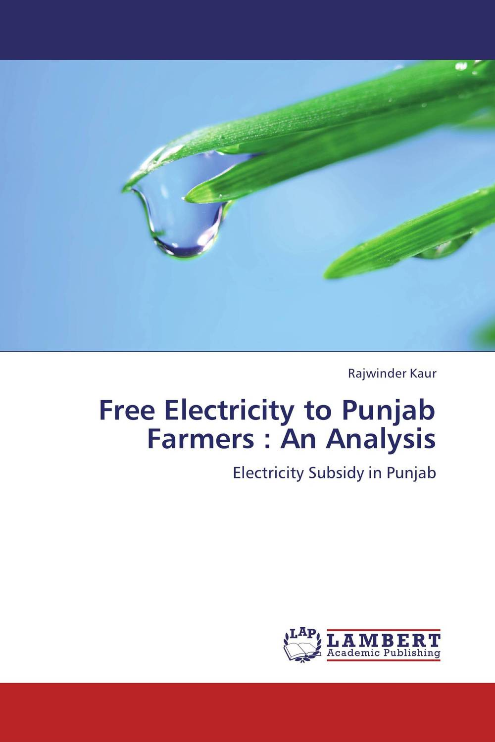 Free Electricity to Punjab Farmers : An Analysis community resilience of village udekaran punjab india