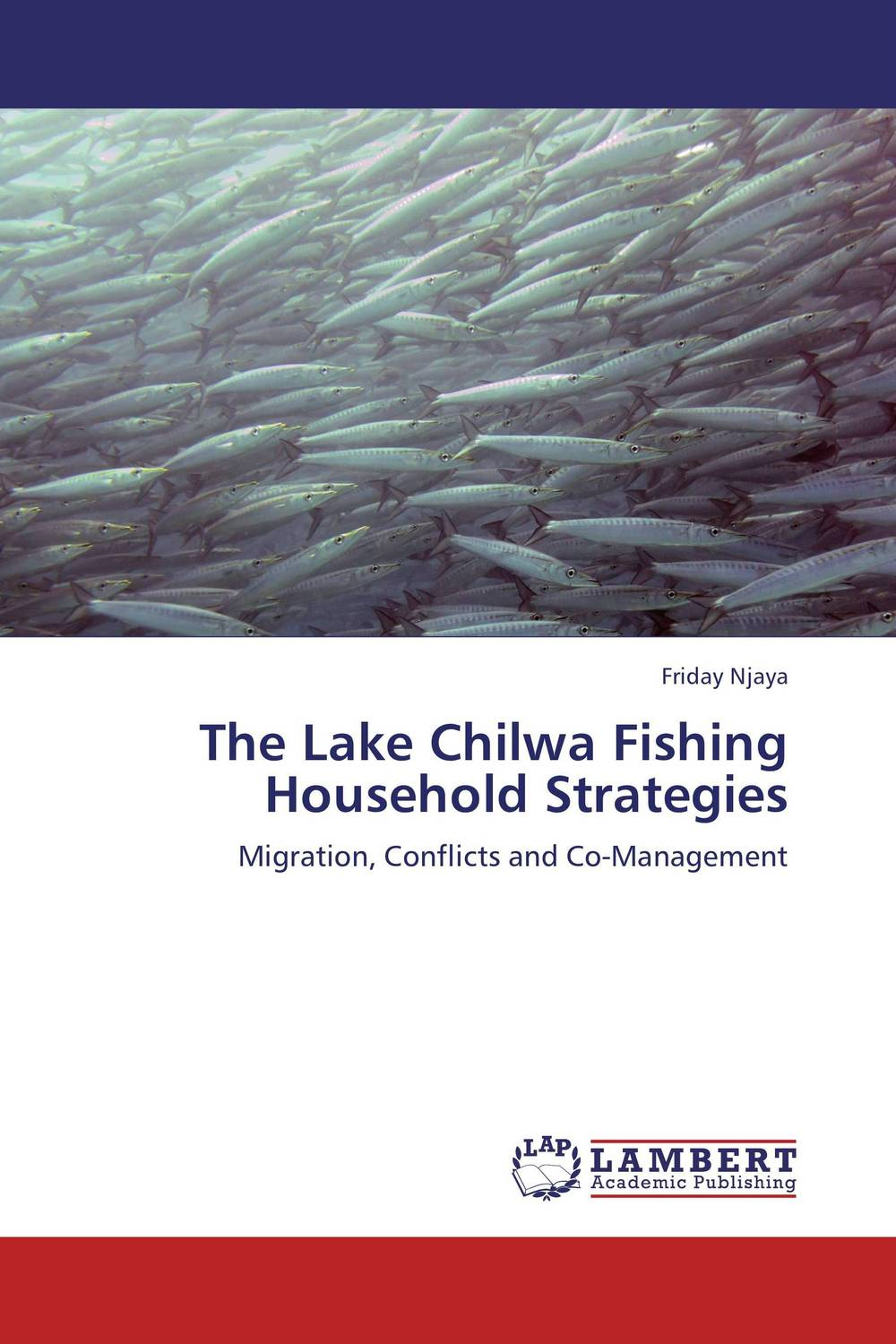 The Lake Chilwa Fishing Household Strategies reese t moore f skills first the castle by the lake level 2 teacher s book