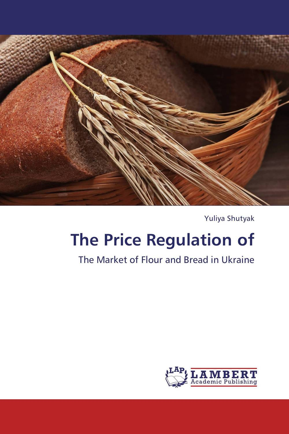 The Price Regulation of risk regulation and administrative constitutionalism
