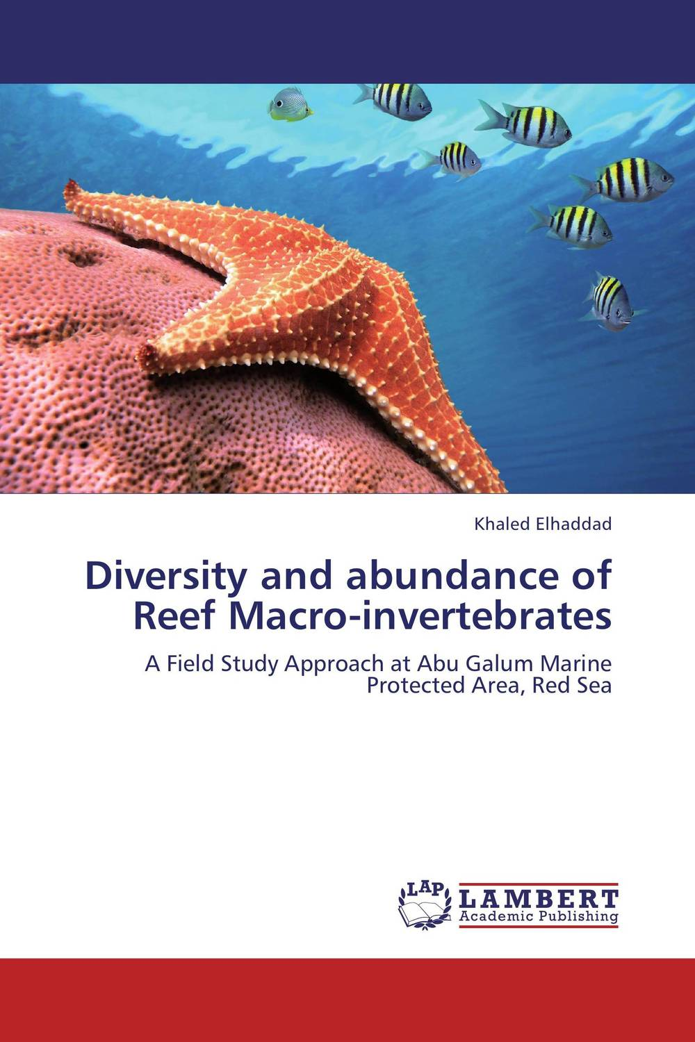 Diversity and abundance of Reef Macro-invertebrates seeing things as they are