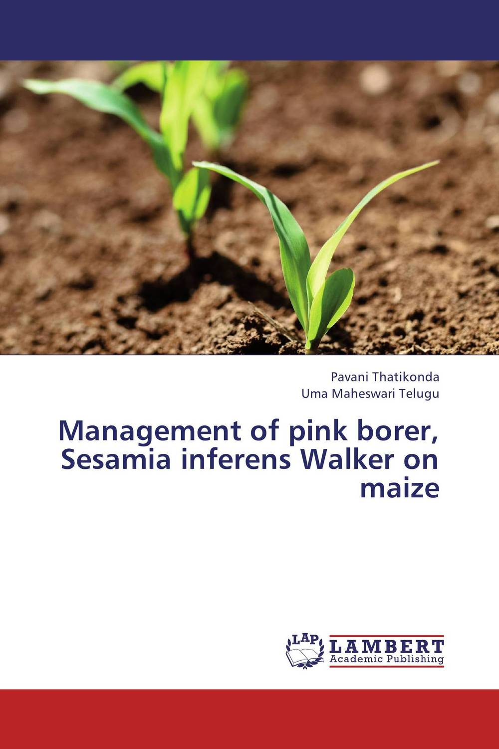 Management of pink borer, Sesamia inferens Walker on maize on the distribution of information structures and focal points