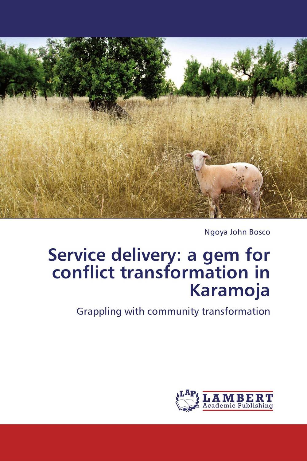 Service delivery: a gem for conflict transformation in Karamoja maureen a adoyo health service delivery in kenya