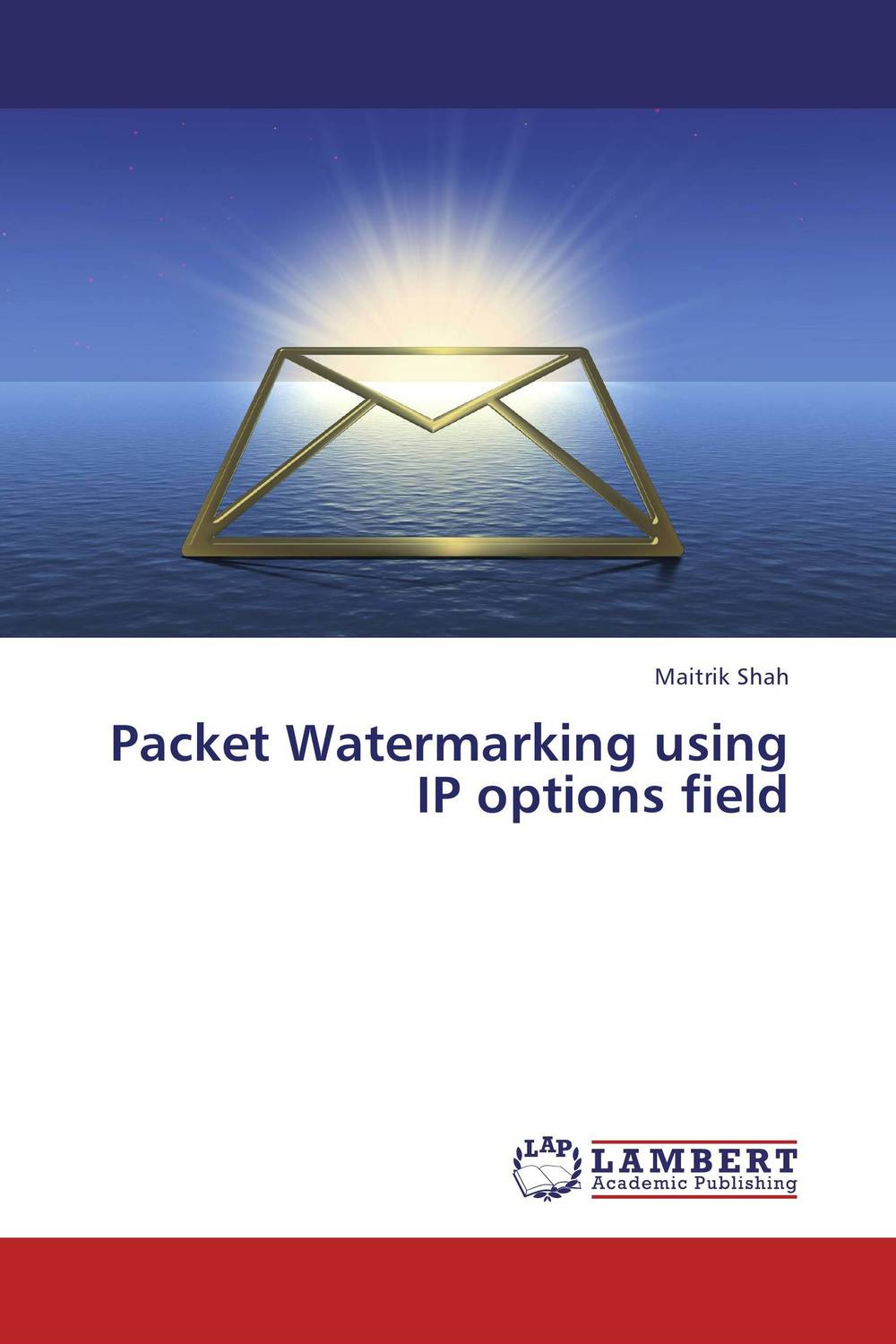 Packet Watermarking using IP options field packet watermarking using ip options field
