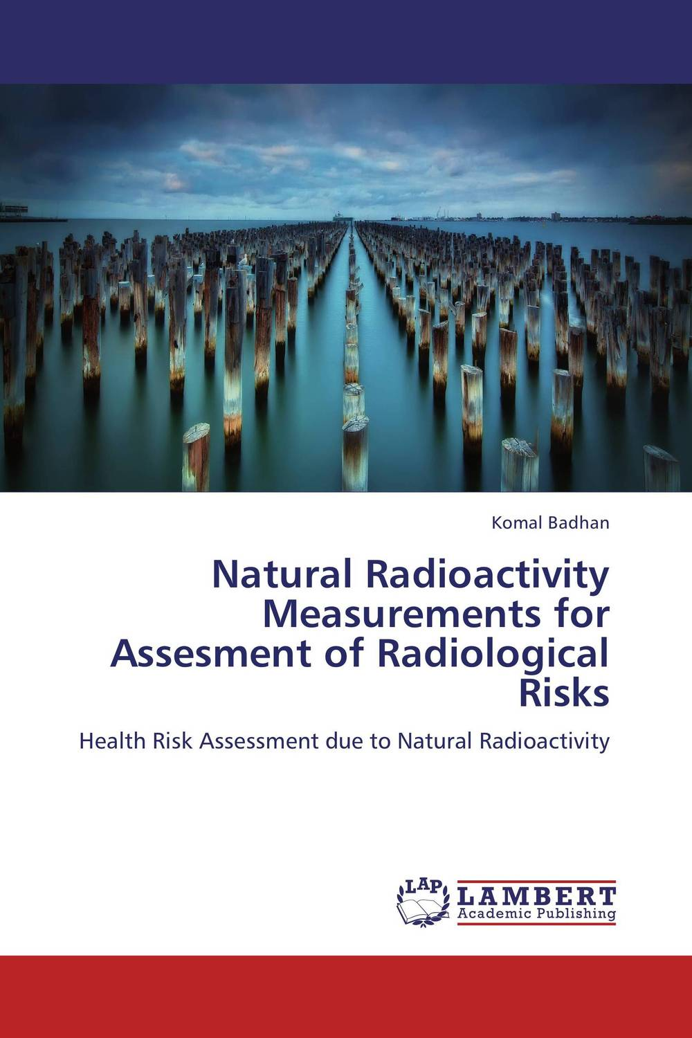 Natural Radioactivity Measurements for Assesment of Radiological Risks купить