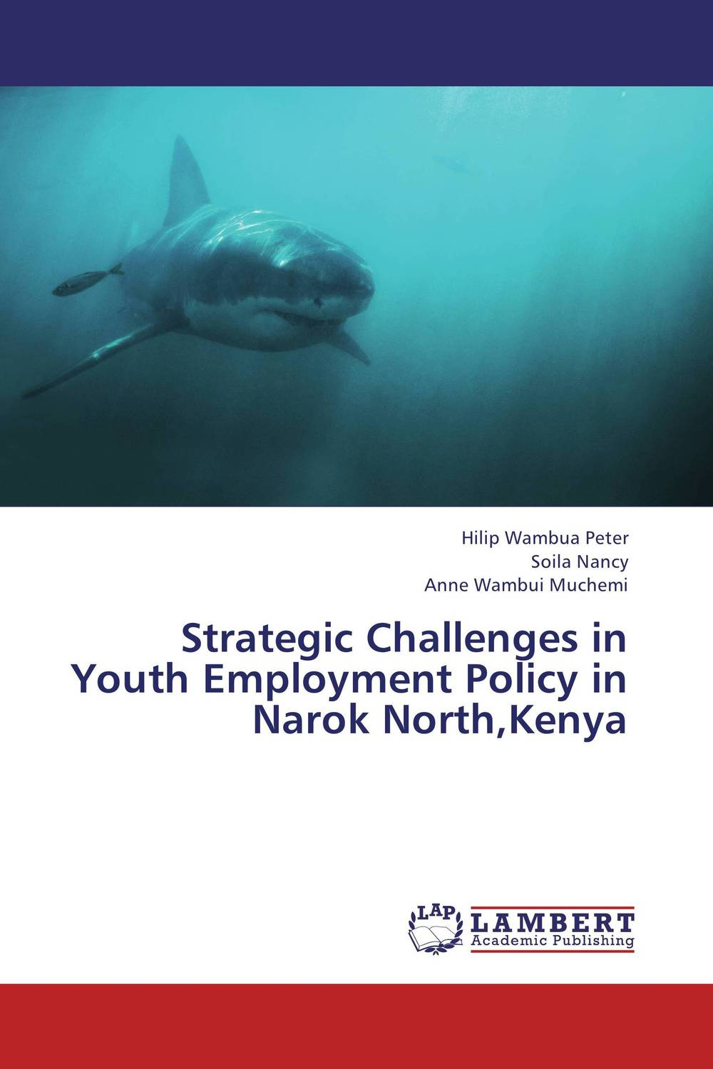 Strategic Challenges in Youth Employment Policy in Narok North,Kenya managing integration of immigrant youth