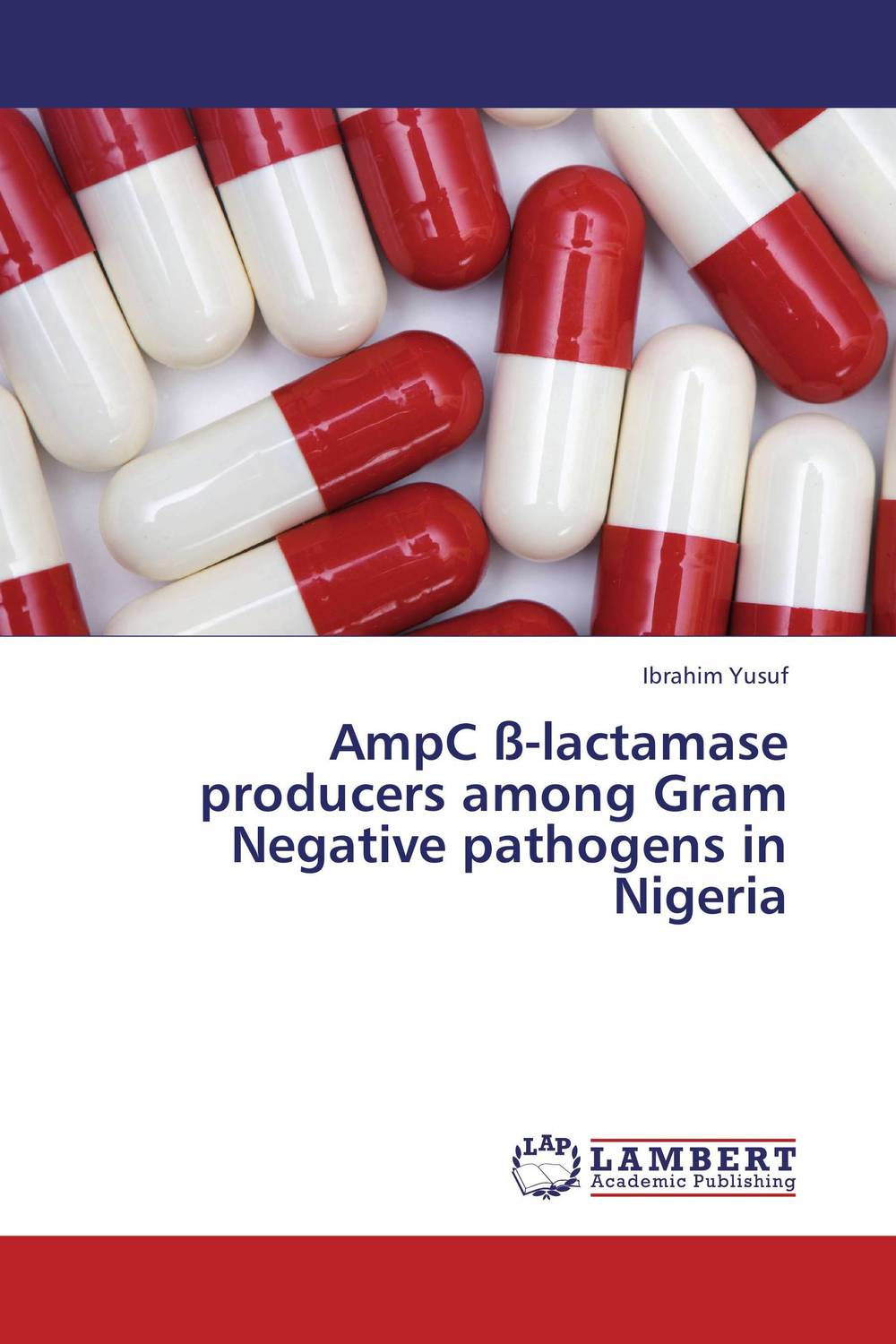 AmpC ?-lactamase producers among Gram Negative pathogens in Nigeria the meaning of voice to experienced nurses in magnet hospitals