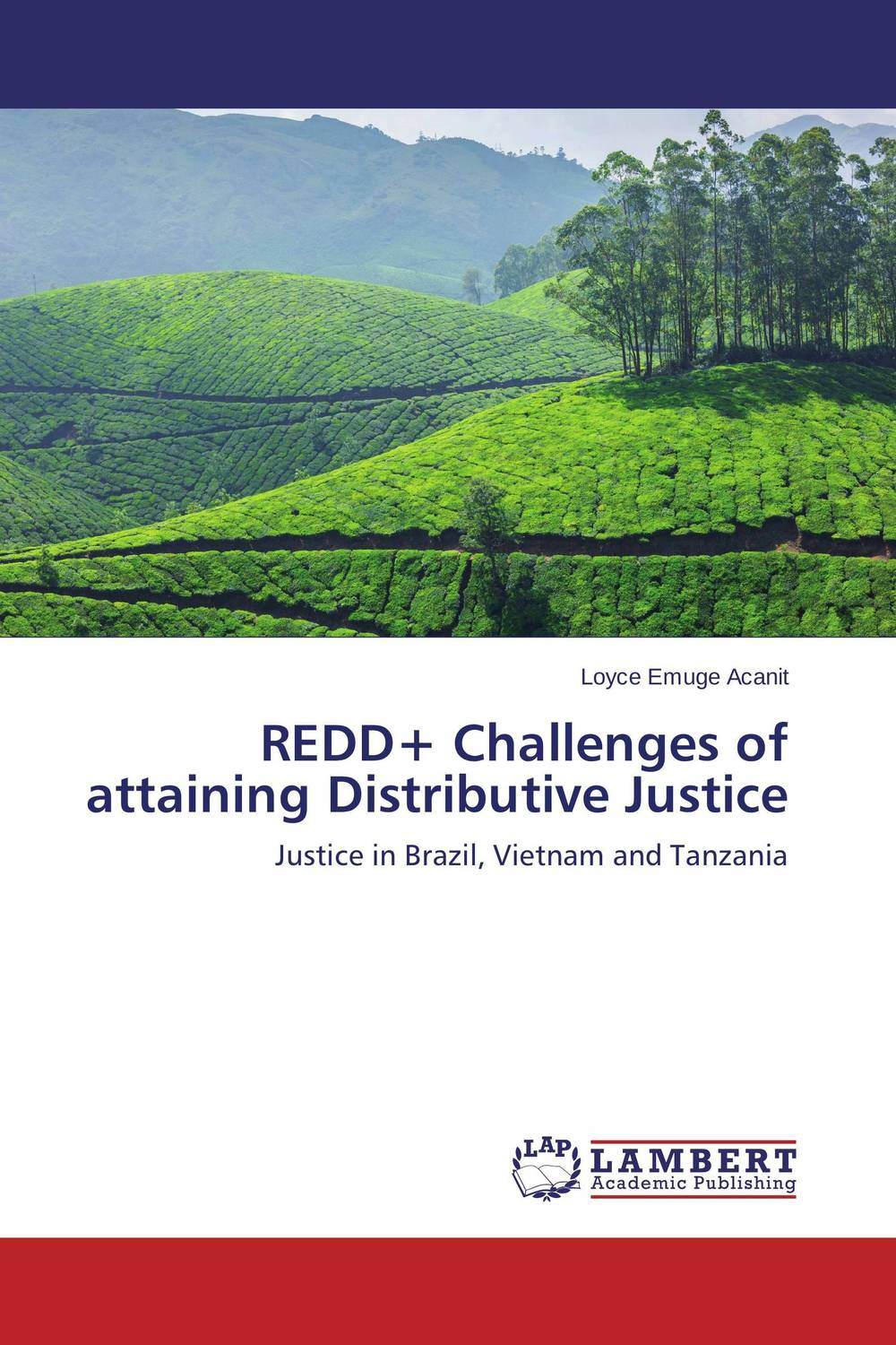 REDD+ Challenges of attaining Distributive Justice a short history of distributive justice