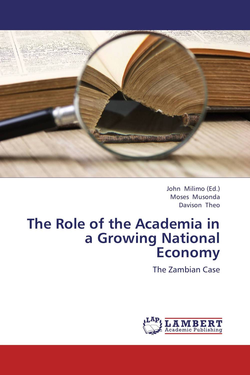 The Role of the Academia in a Growing National Economy the challenges experienced by non governmental organisations