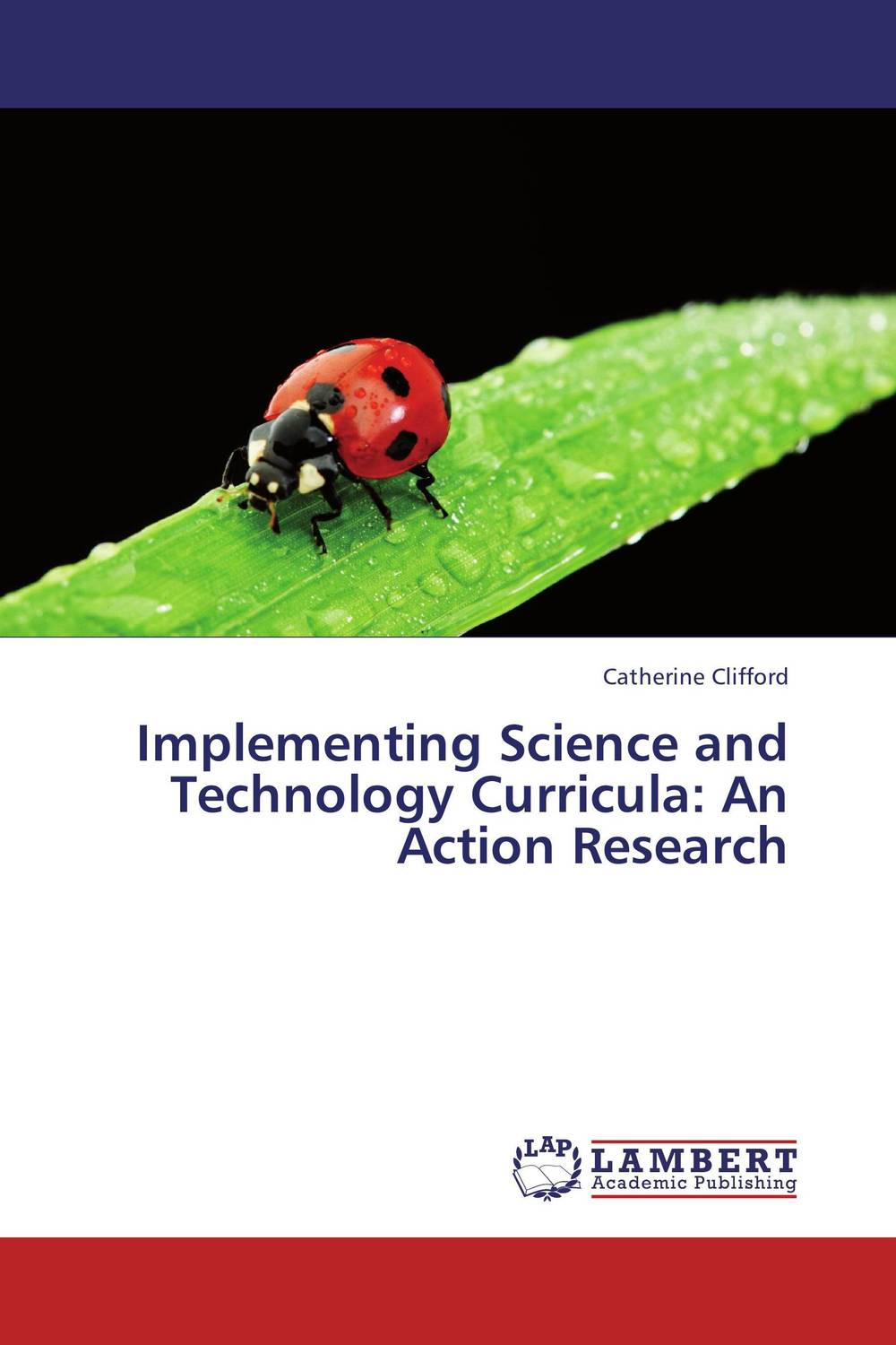Implementing Science and Technology Curricula: An Action Research