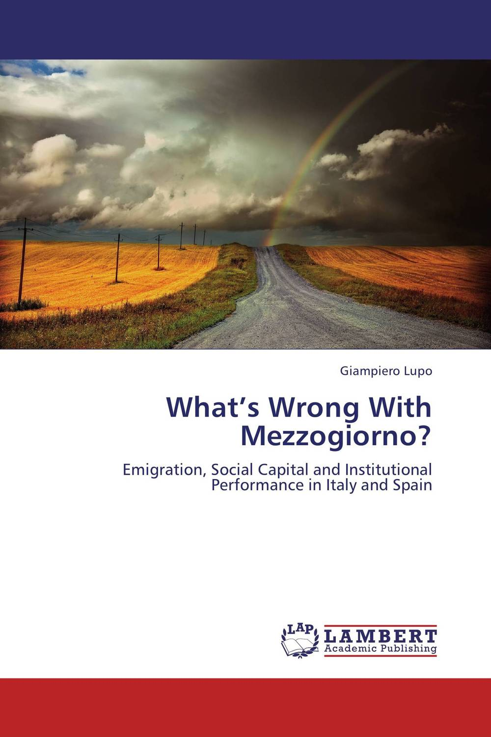 What's Wrong With Mezzogiorno? i manev social capital and strategy effectiveness an empirical study of entrepreneurial ventures in a transition economy