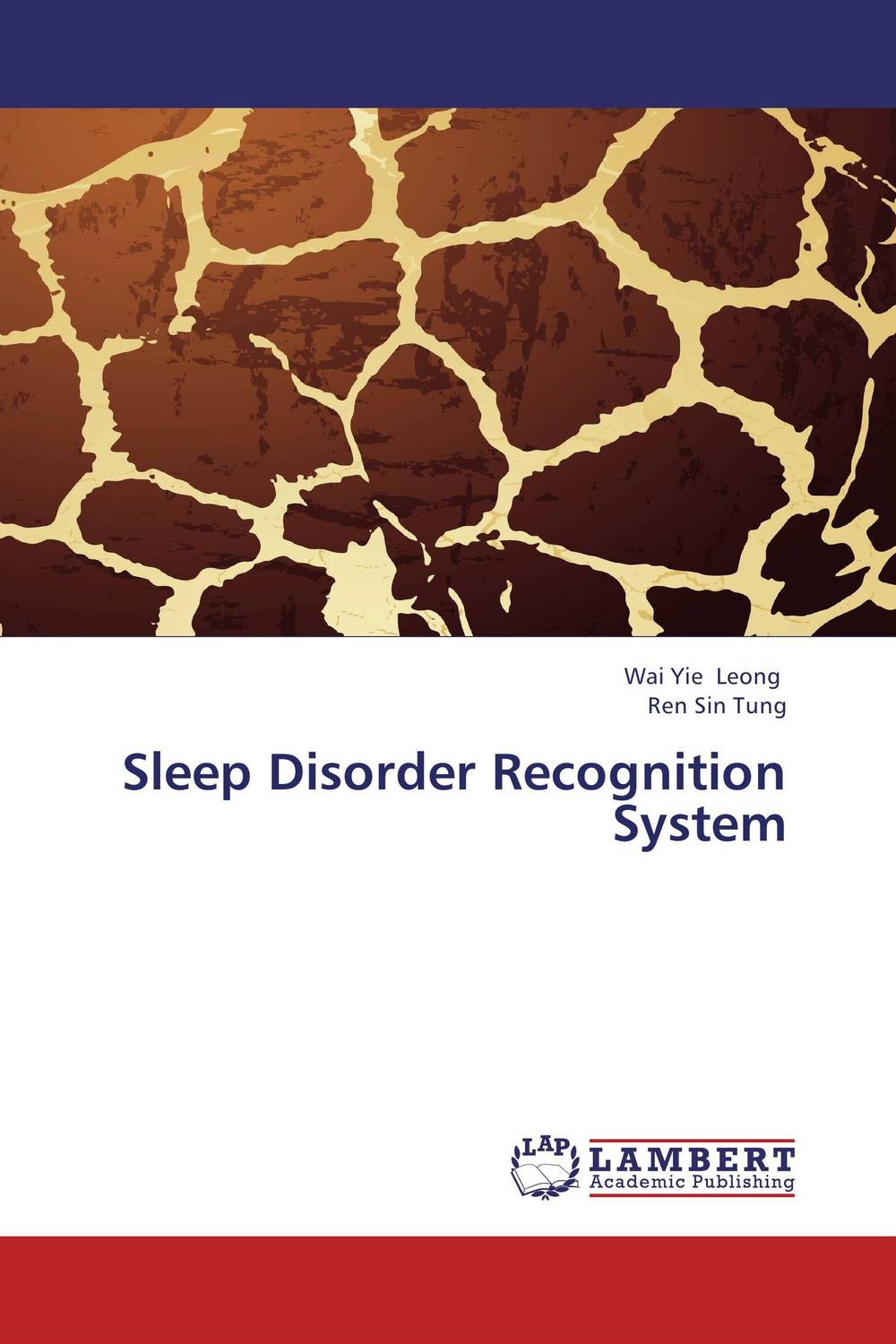 Sleep Disorder Recognition System ben buchanan brain structure and circuitry in body dysmorphic disorder
