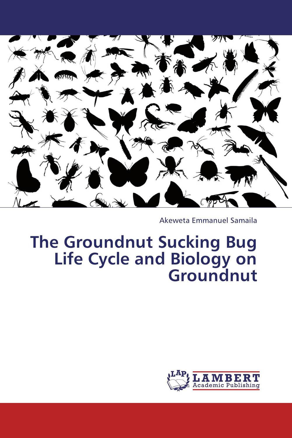 The Groundnut Sucking Bug Life Cycle and Biology on Groundnut like bug juice on a burger