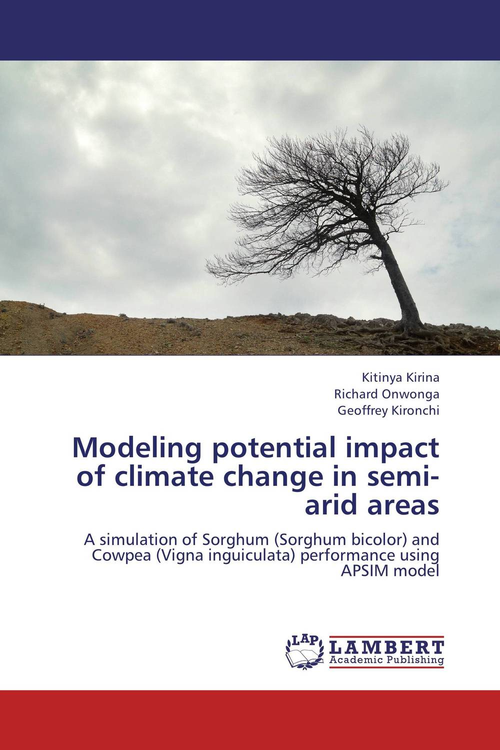 Modeling potential impact of climate change in semi-arid areas farm level adoption of water system innovations in semi arid areas