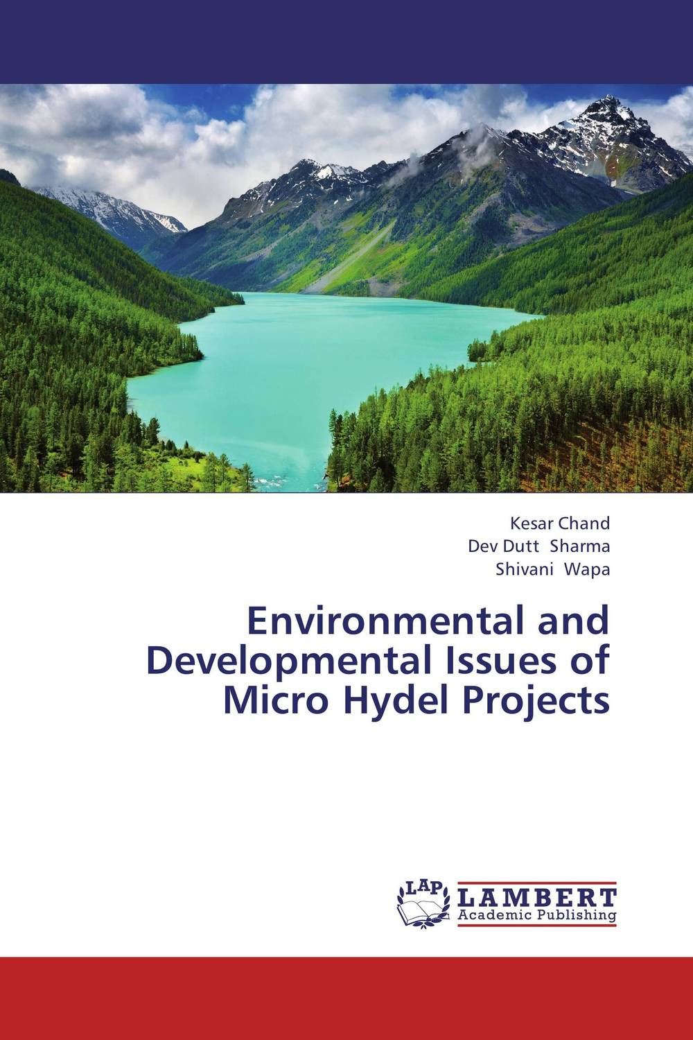 Environmental and Developmental Issues of Micro Hydel Projects seeing things as they are