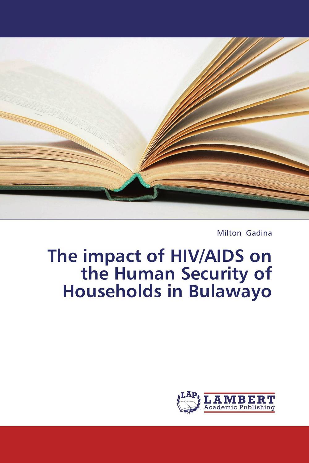 The impact of HIV/AIDS on the Human Security of Households in Bulawayo an overview on hiv aids
