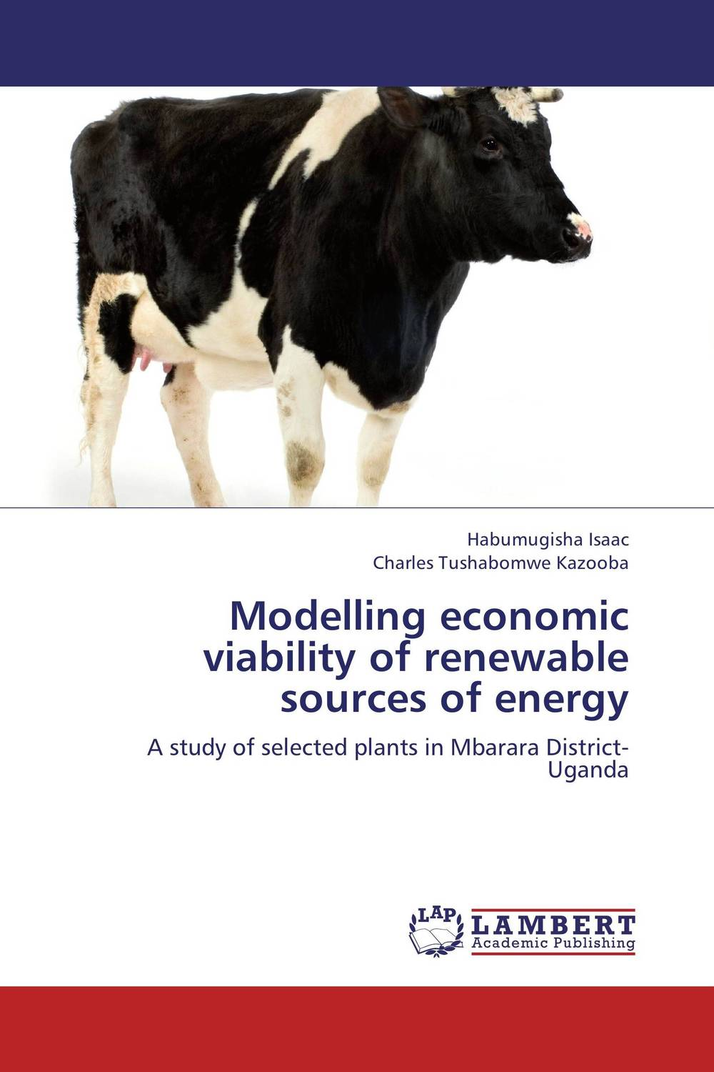 Modelling economic viability of renewable sources of energy assessing the economic aspects of biogas plants